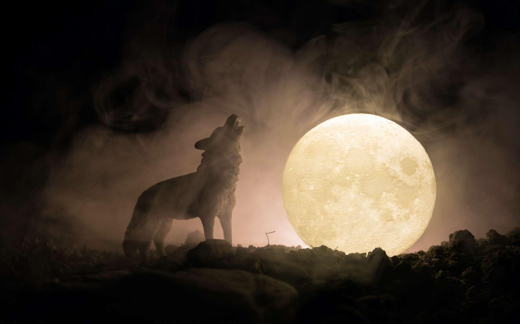 La première pleine Lune de janvier est surnommée la « Lune du loup ». Celle de 2020 a été l'occasion d'une éclipse de Lune pénombrale qui a pu être observée sur une grande partie de l'Europe. © zef art, Adobe Stock