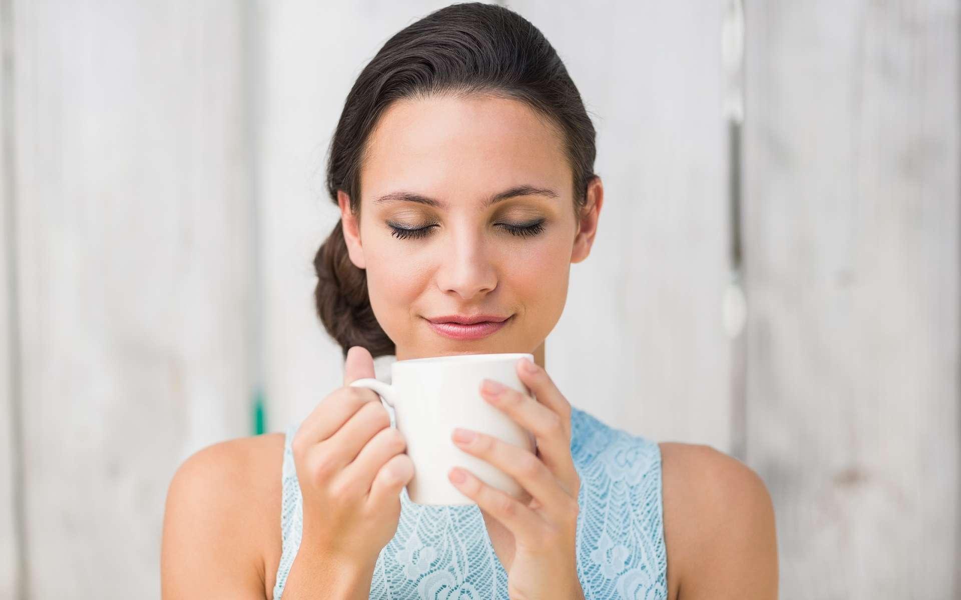 Le thé est connu pour ses bienfaits, notamment car il contient des antioxydants, bons pour la santé. © wavebreakmedia, Shutterstock