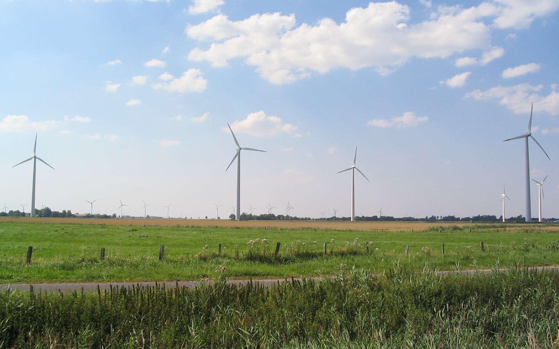 Éoliennes dans la campagne allemande. © Dirk Ingo Franke, Wikimedia Commons, cc by sa 1.0