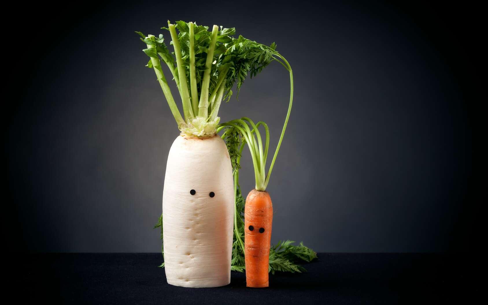 Un nutriment est fourni par l'alimentation et sert au fonctionnement du corps. © nullplus - Fotolia.com