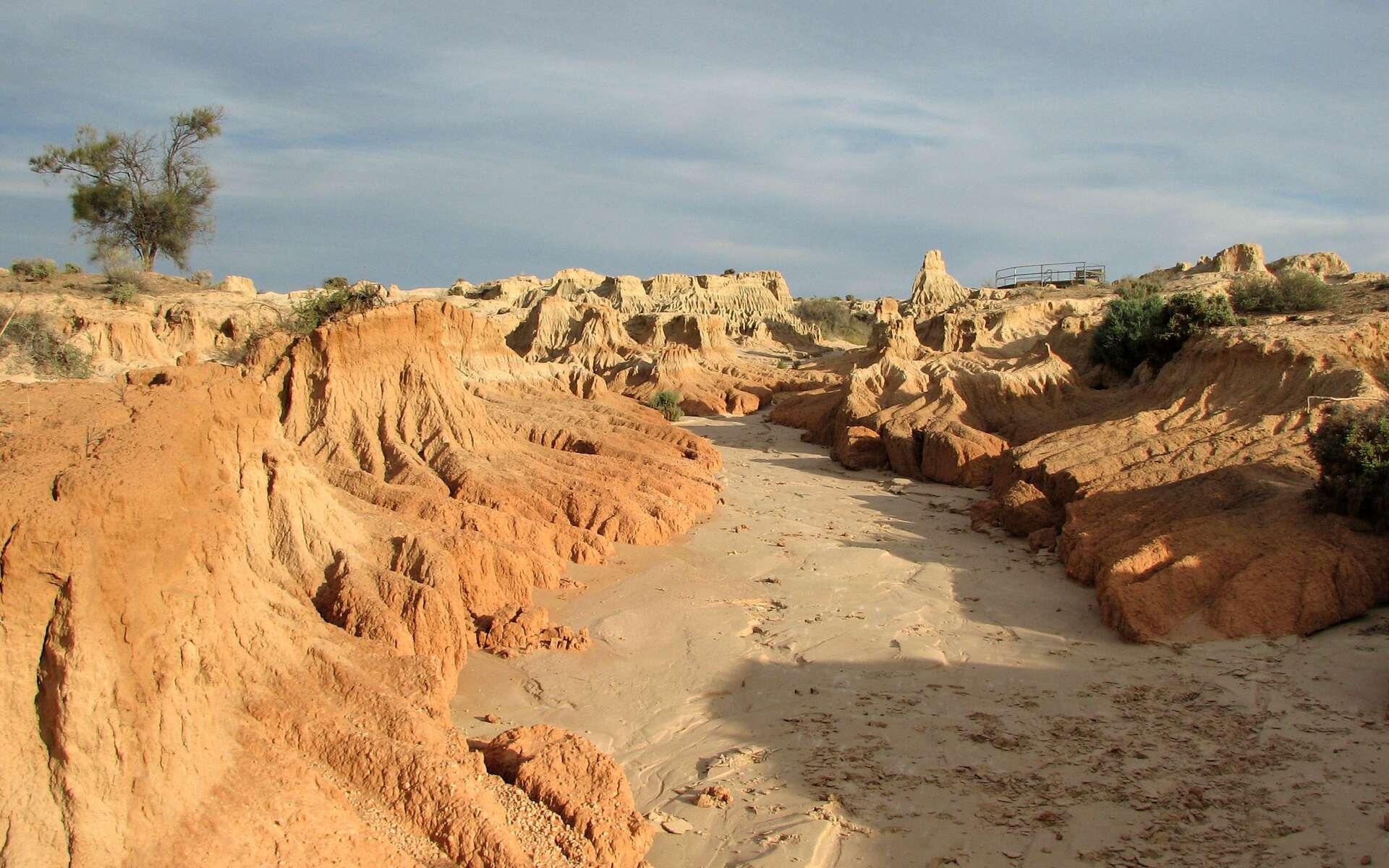 Les épisodes de sécheresse en Australie sont liés aux phases positives du dipôle de l'océan Indien. Sur ces trente dernières années, 11 événements se sont produits. De plus en plus d'études convergent vers une augmentation de la fréquence de ces phases positives du dipôle. Le parc national du Mungo, au nord de Melbourne (ici en photo) est le premier à en subir les conséquences. © jcolman, Flickr, cc by nc nd 2.0