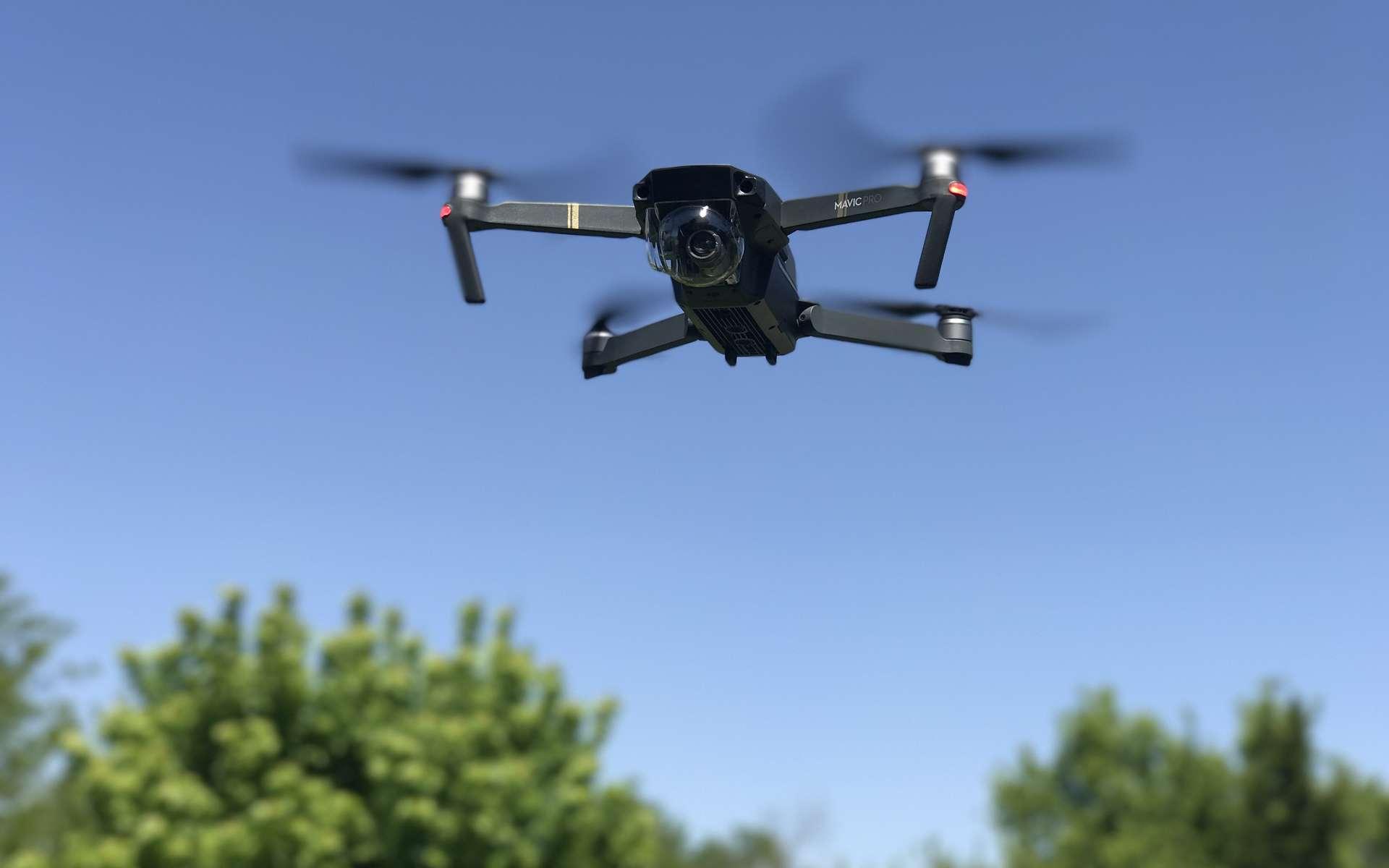 Seuls les drones de plus de 800 grammes sont concernés par les nouvelles obligations de déclaration auprès des autorités de l'aviation civile. Les pilotes amateurs doivent également suivre une formation en ligne. © DJI