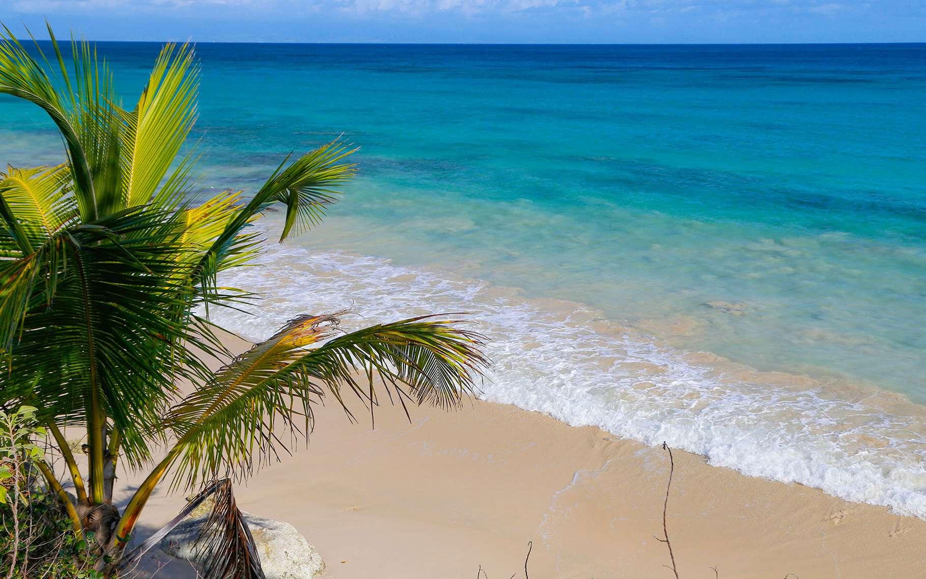 Marie-Galante est la troisième île des Antilles françaises par sa superficie : un petit coin de paradis ! © Antoine