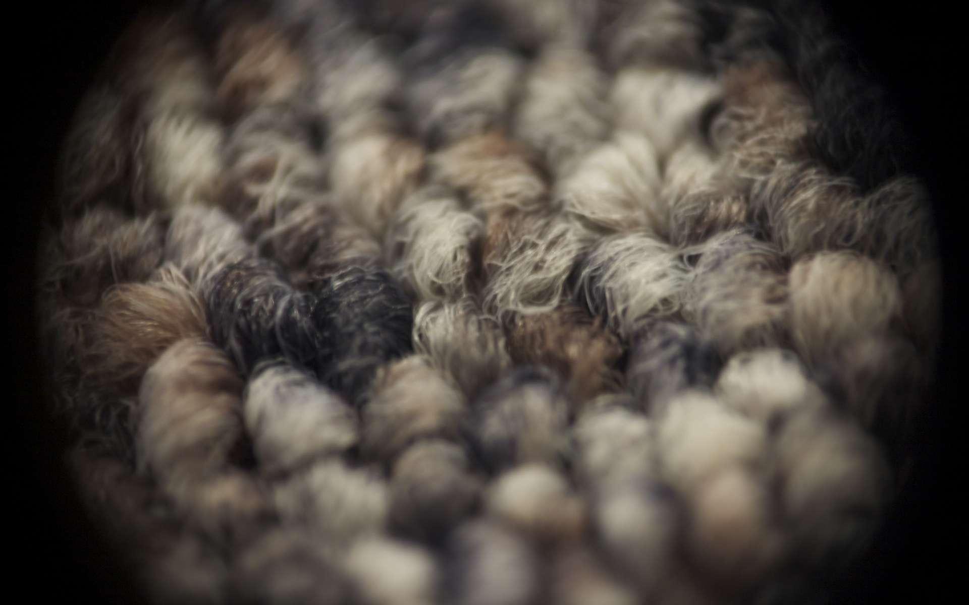 Évaluez la surface de la pièce avant l'achat de moquette. © Arthur40A, Flickr, CC BY-SA 2.0