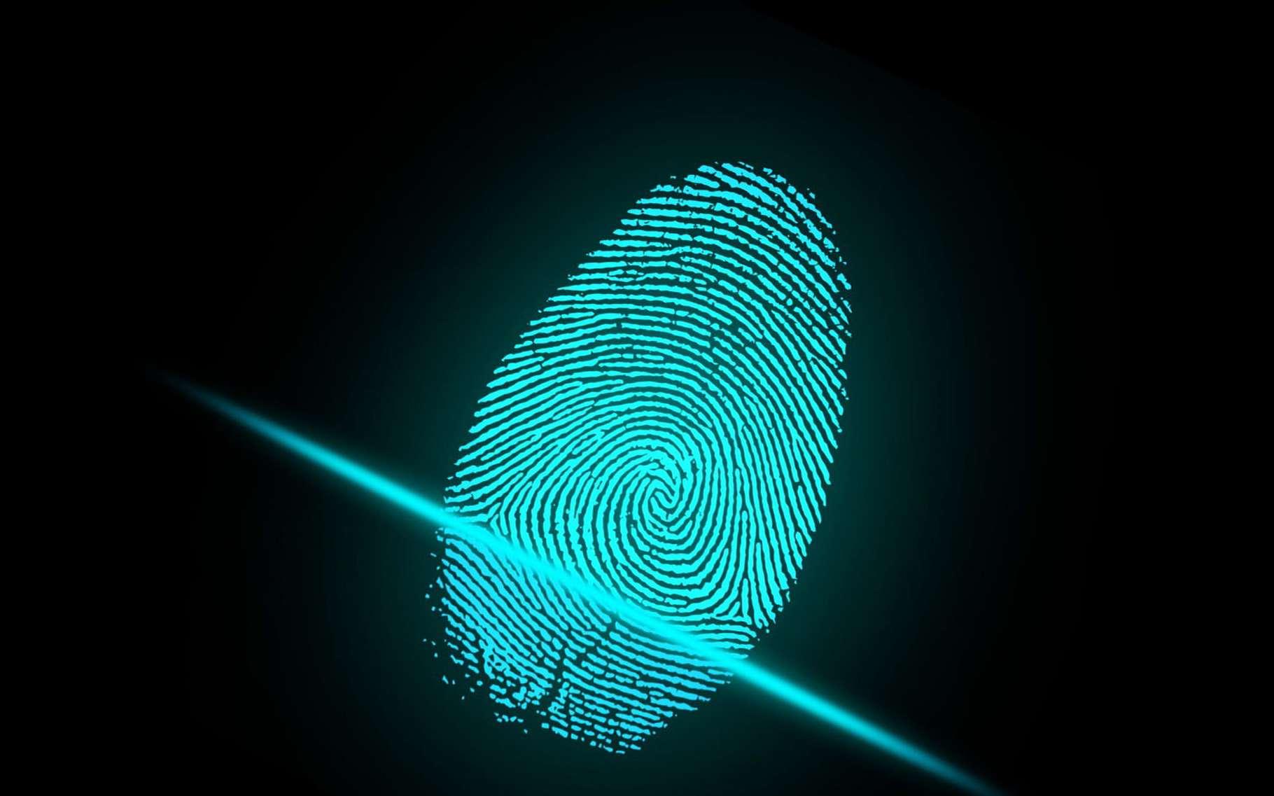 Quelles sont les caractéristiques d'une empreinte digitale ? © Ar130405, Pixabay, DP