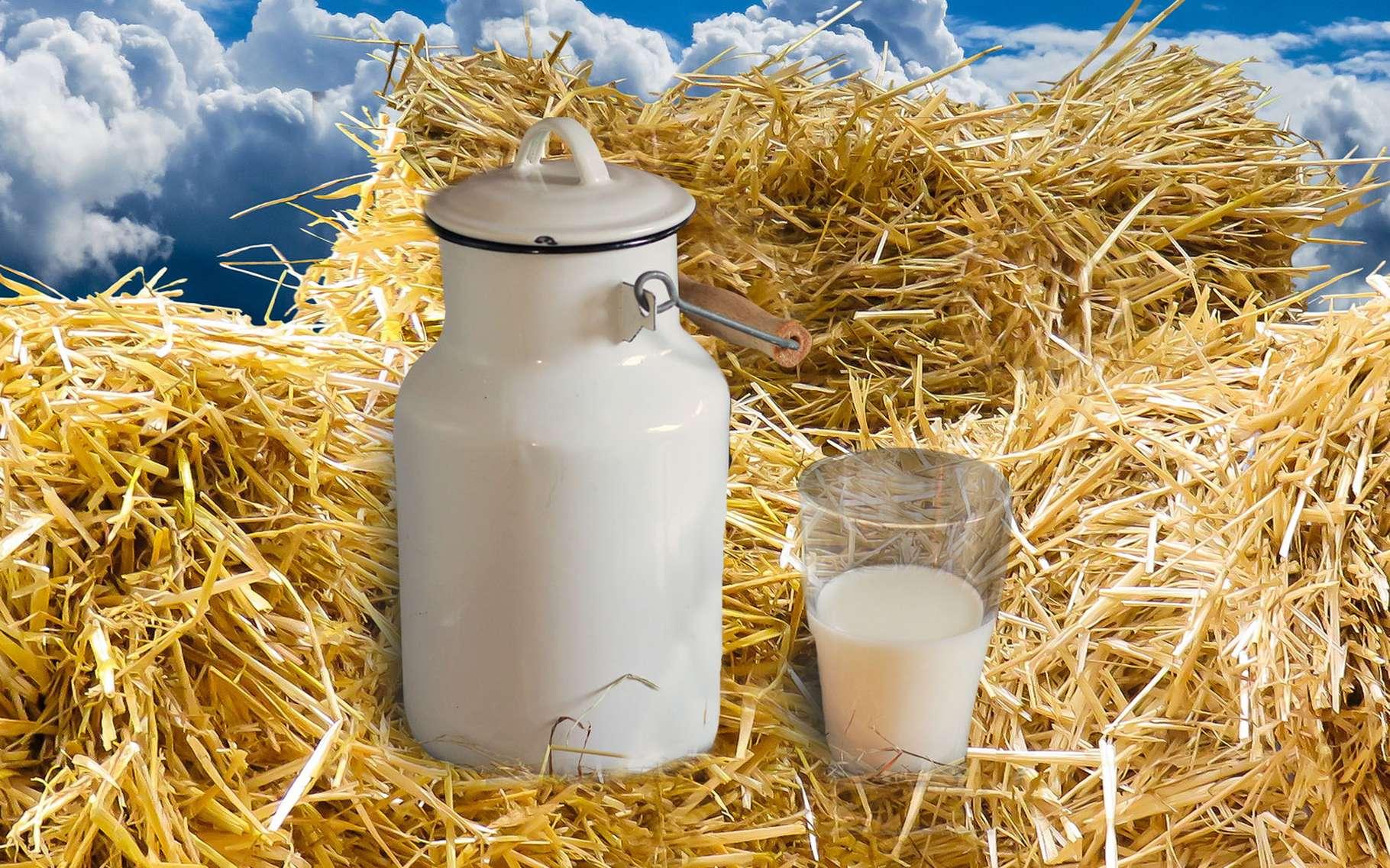 Le pot au lait de Perrette. © DP