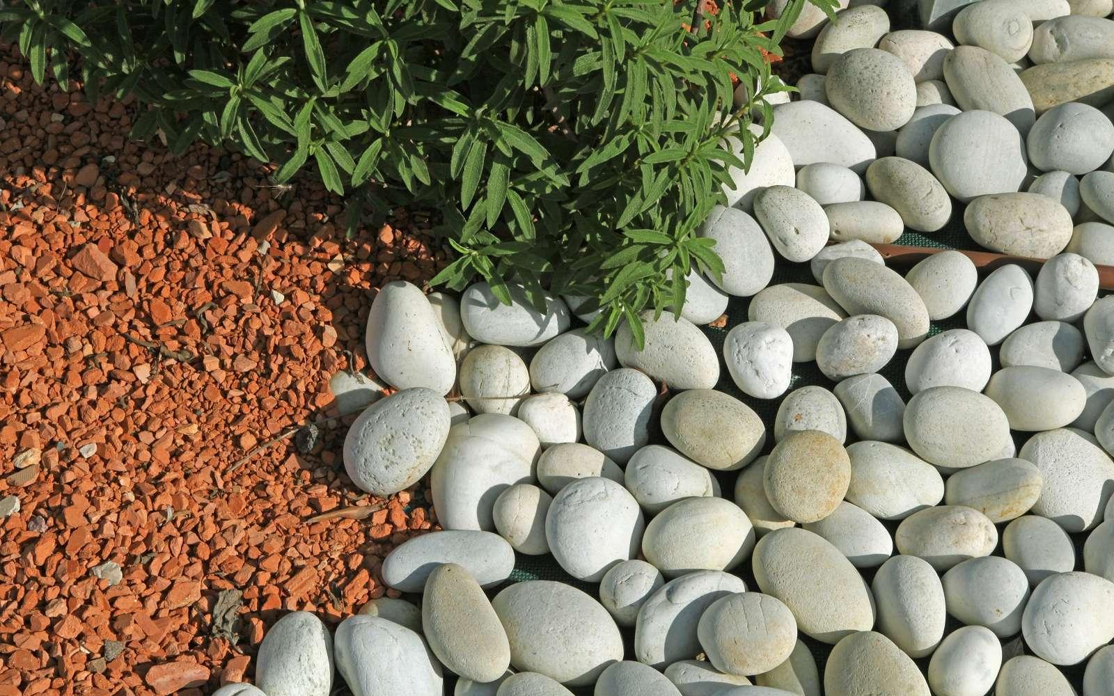 Mélangez les matières de paillis minéral pour ajouter une touche décorative à vos massifs. © hcast, Adobe Stock