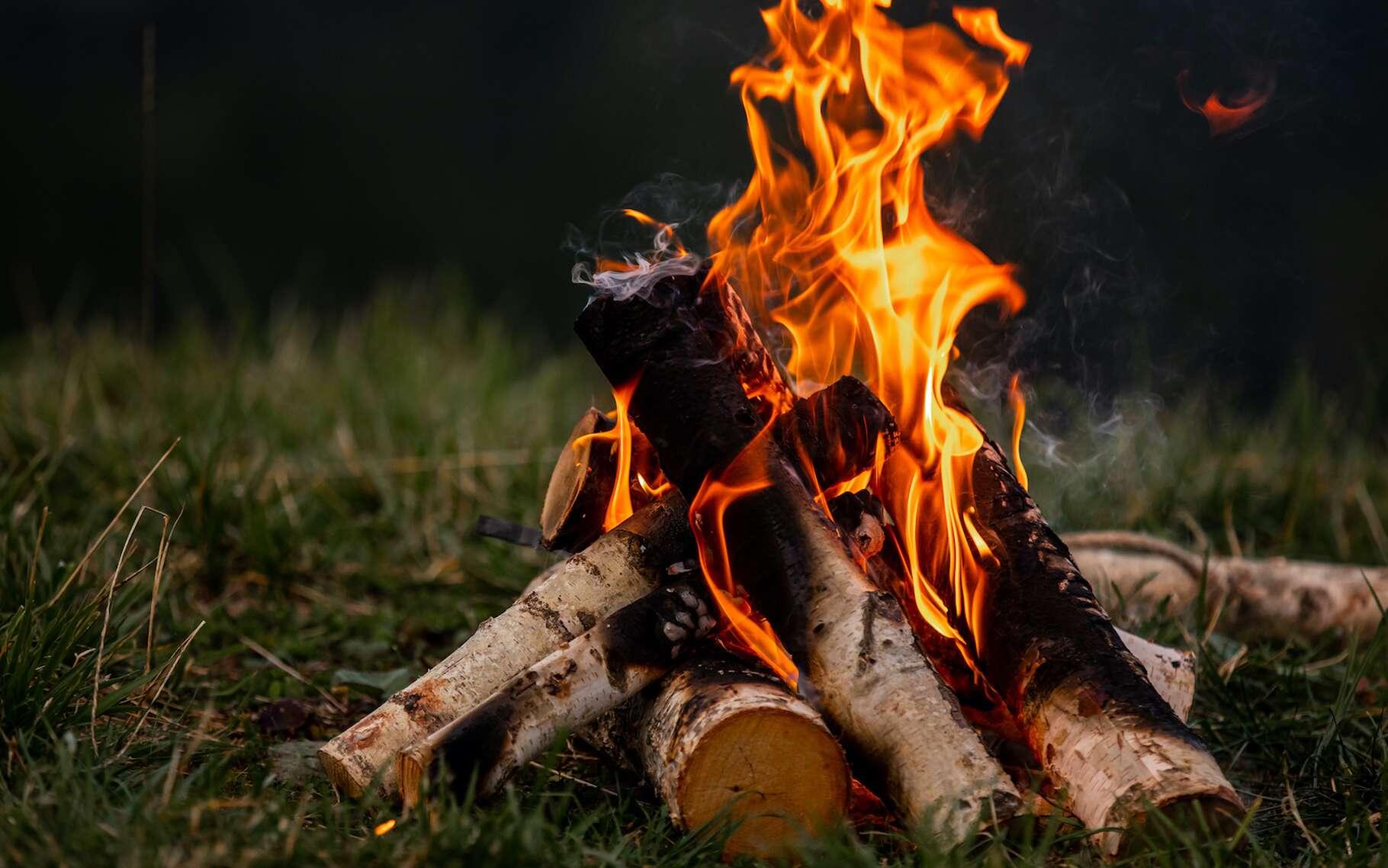 Le bois est l'un des plus connus des combustibles. © Andriy, Adobe Stock