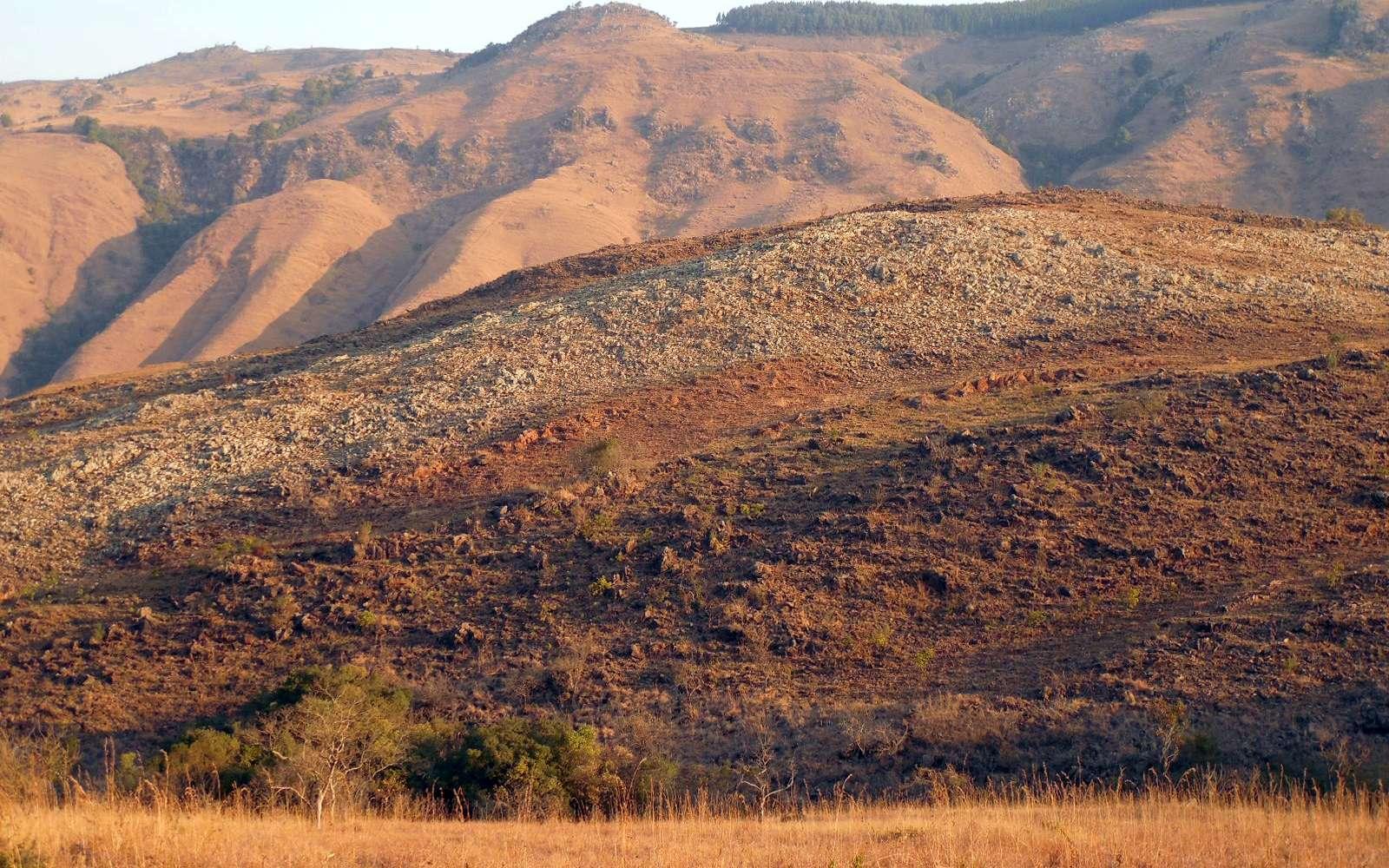 Photographie de terrain montrant une partie du complexe ultramafique de Pioneer à l'est de Barberton. Les collines de Moodies, reposant sur des grès riches en quartz, peuvent être vues en arrière-plan. Les strates claires se composent de dunites, les strates rouges au premier plan de pyroxénite. © 2018 35th IGC