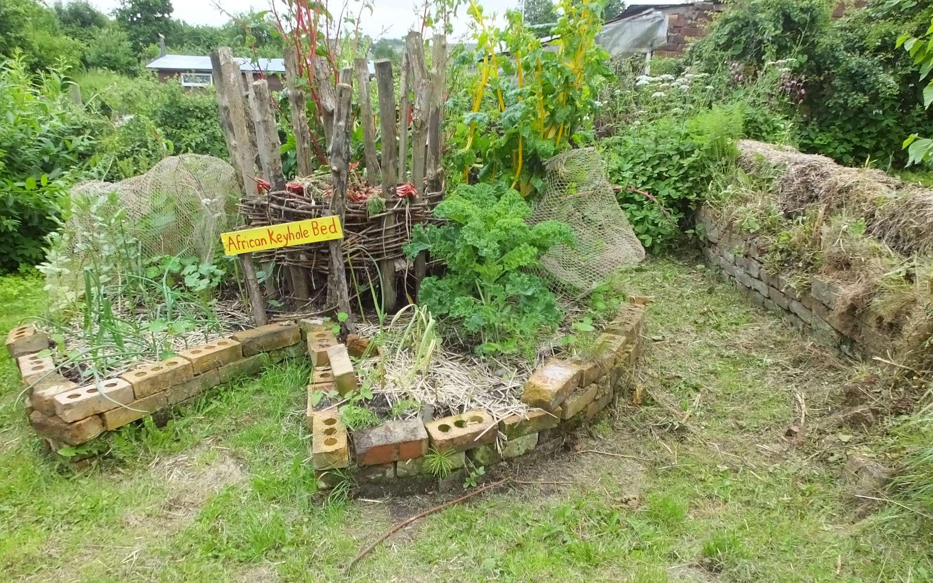 Le jardin en trou de serrure est un concept d'aménagement originaire d'Afrique. Ces méthodes permettent une importante production de légumes sur des surfaces limitées tout en contrôlant l'arrosage. © Clem Rutter, Wikimedia Commons, by-sa 3.0