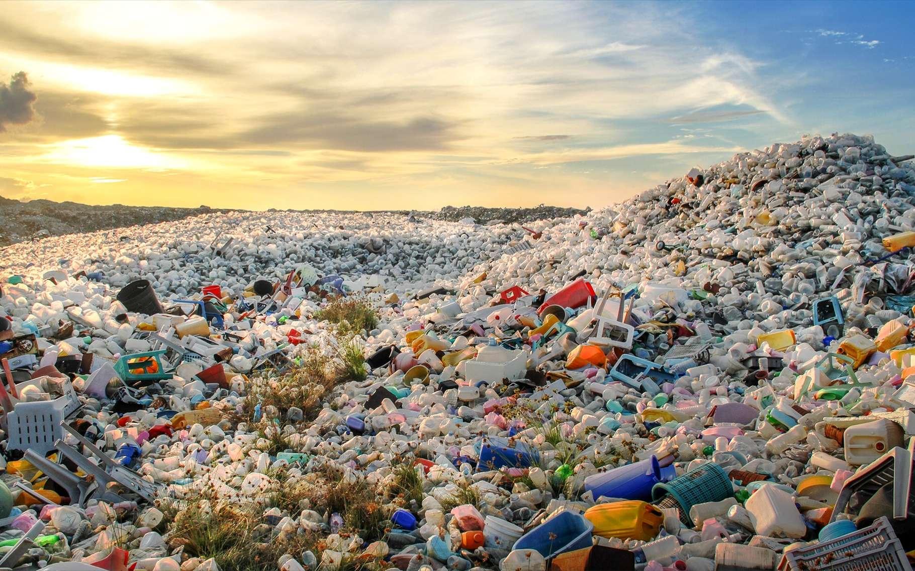 Des montagnes de déchets s'amoncellent dans le monde. Il y a urgence. © Mohamed Abdulraheem, Shutterstock