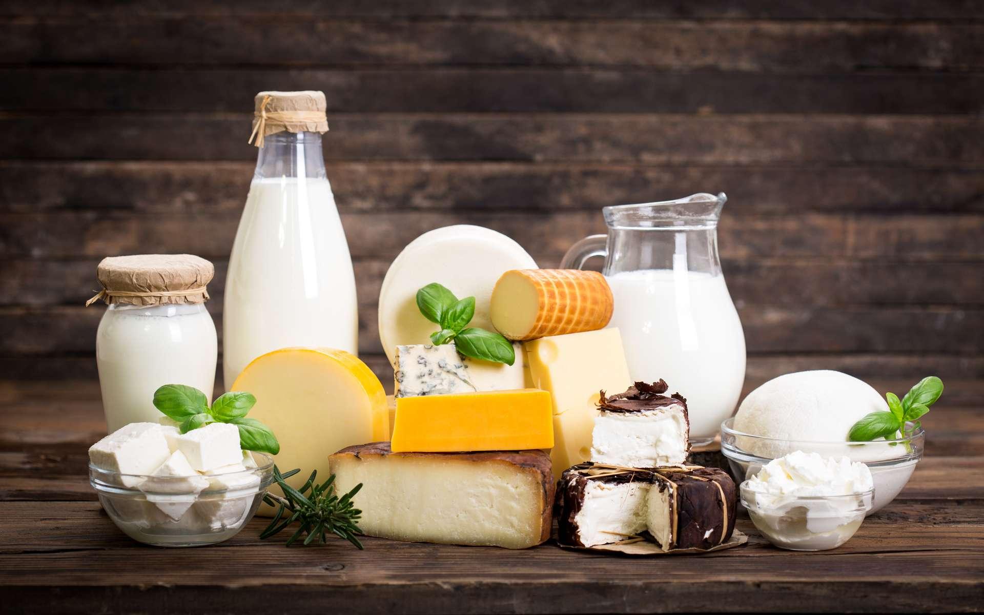 La consommation de produits laitiers est neutre pour la santé. © pilipphoto, Adobe Stock