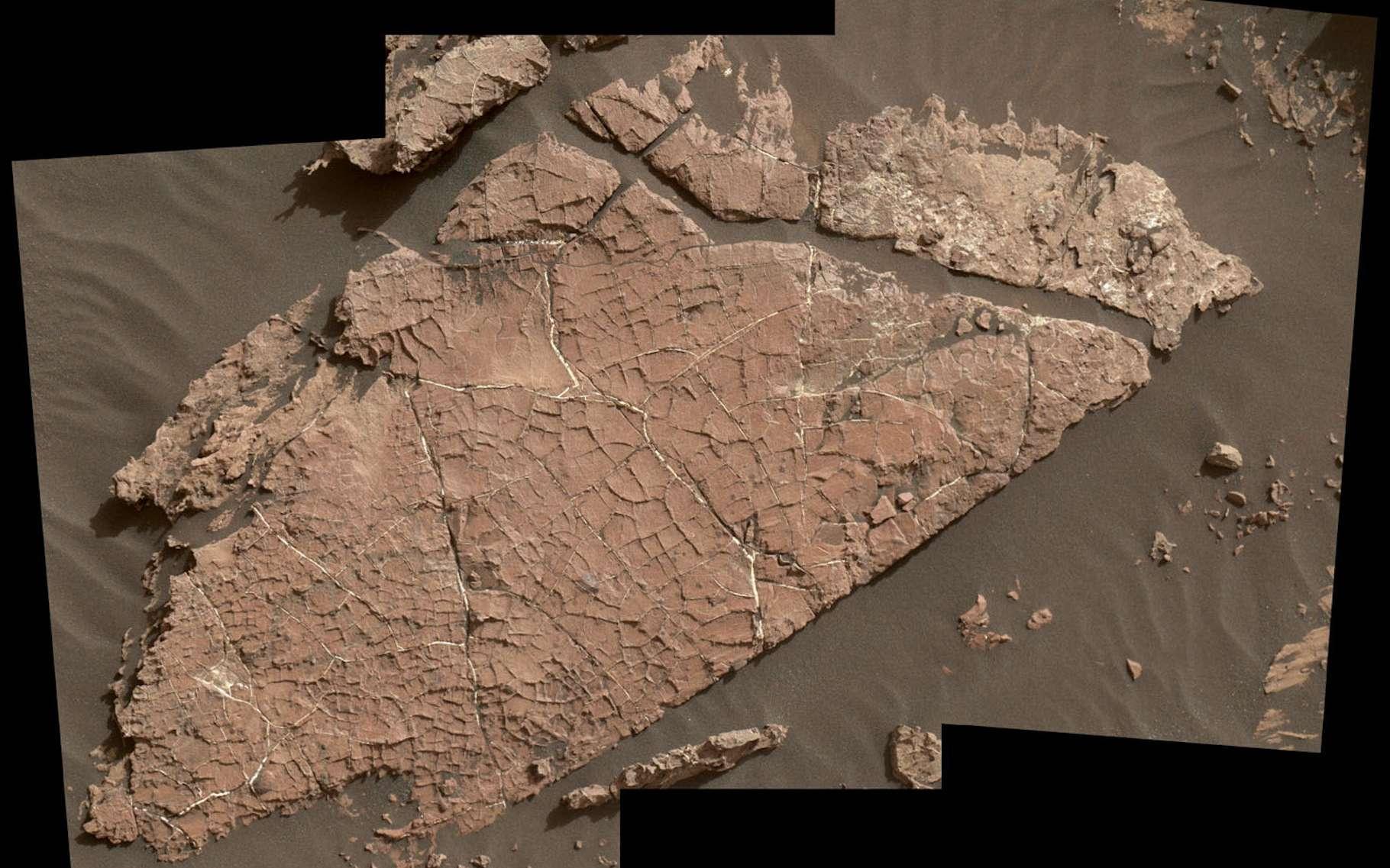 Ce réseau de fissures dans la roche martienne appelée Old Soaker pourrait s'être formé suite au séchage d'une couche de boue il y a 3 milliards d'années. © Nasa, JPL-Caltech, MSSS