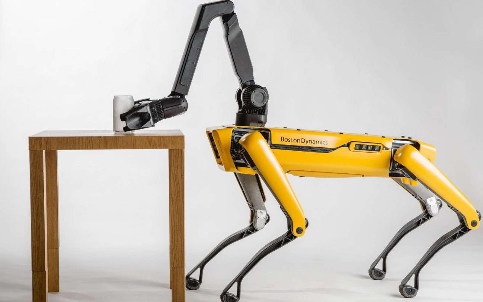 Jusqu'à présent, Boston Dynamics planchait sur des robots robustes et puissants, pensés pour transporter de lourdes charges et évoluer sur n'importe quel type de terrain. SpotMini, lui, est un robot chien davantage tourné vers l'agilité et la précision. © Boston Dynamics