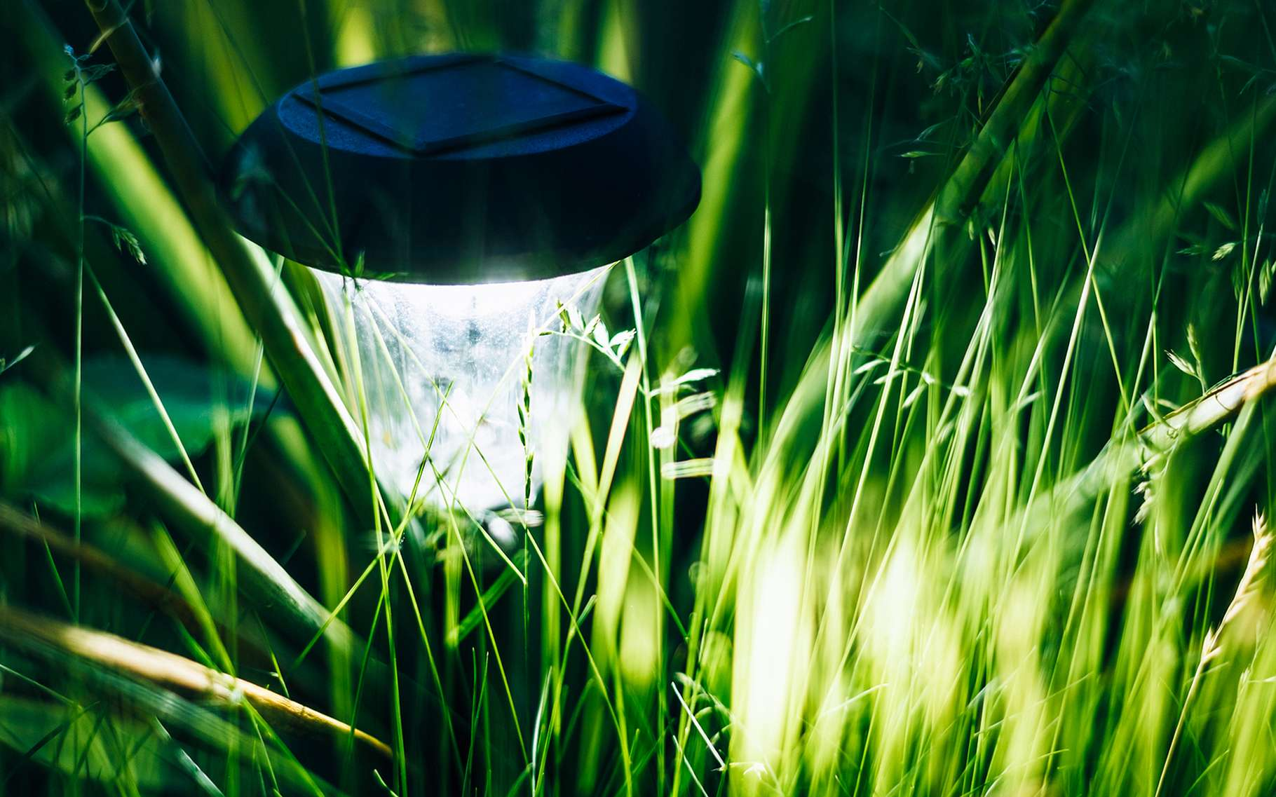 Une lampe solaire pour le jardin doit être autonome, puissante et résistante aux intempéries. © Grisha Bruev, Shutterstock