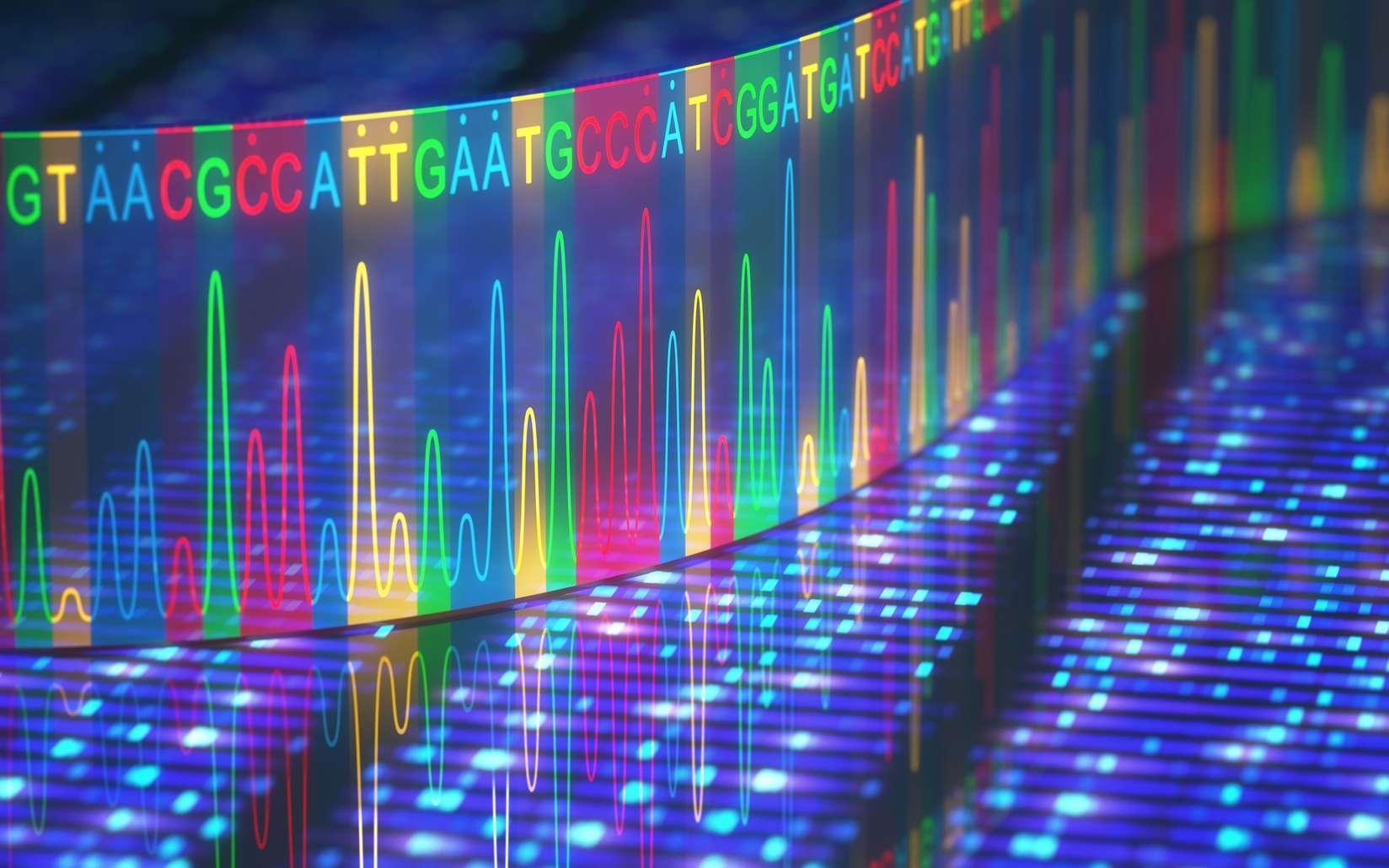 Les séquences des transposons représentent une part importante du génome humain. © ktsdesign, Fotolia