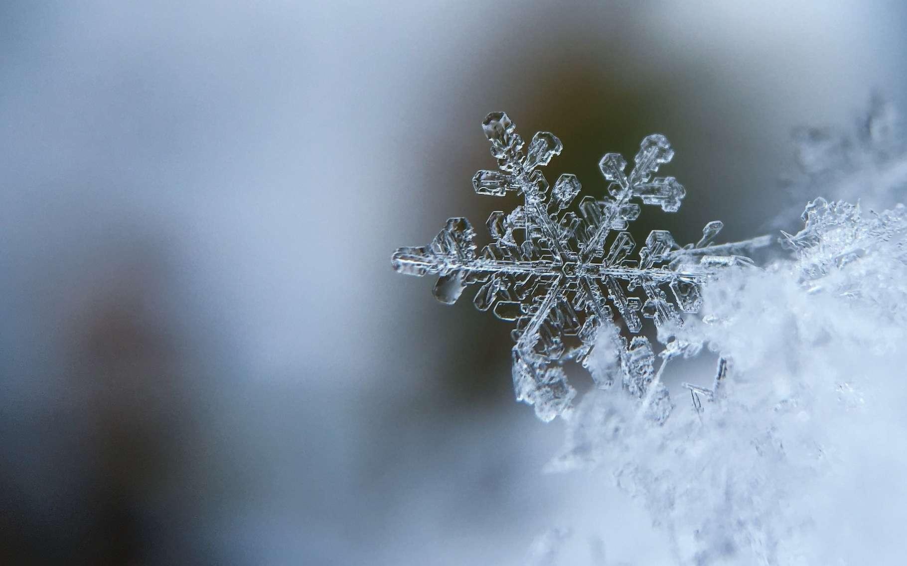 Des milliards de flocons translucides pour constituer un manteau blanc. La neige fait rêver petits et grands. Et elle intrigue les plus curieux. © Aaron Burden, Unsplash