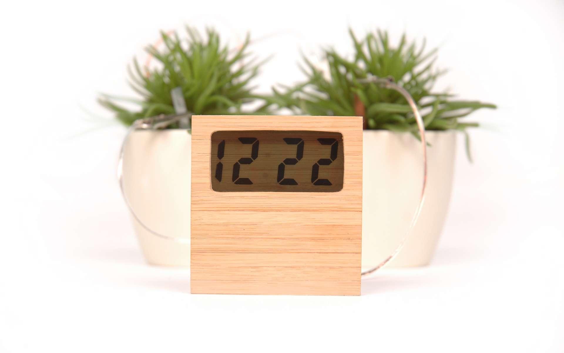 Soil Clock, une horloge qui n'a besoin que de terre et d'eau. © Marly Gommans
