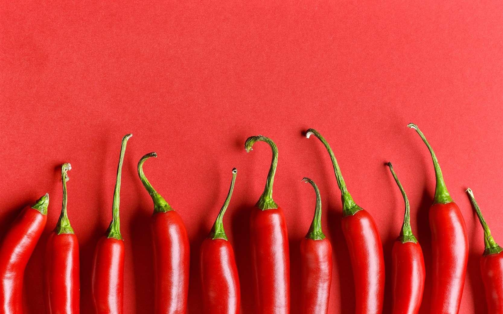 La capsaïcine est la molécule irritante du piment. © Mara Zemgaliete, Fotolia