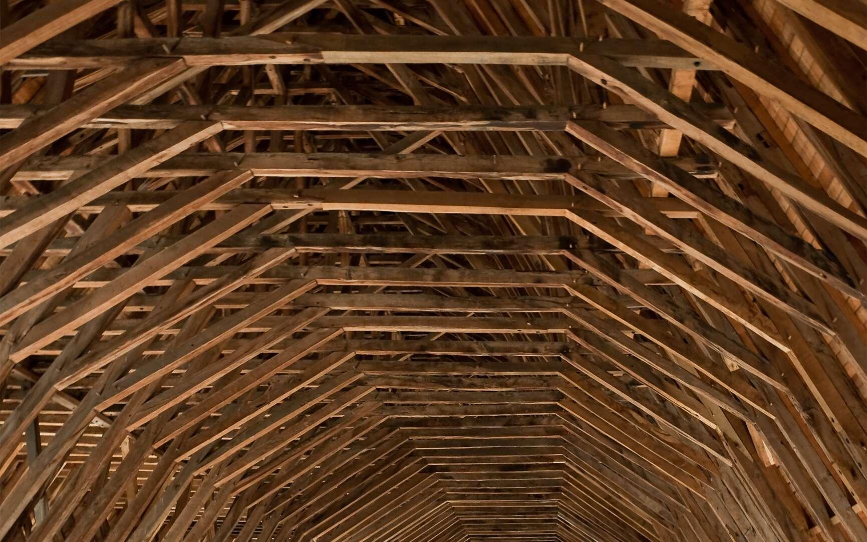 La charpente de cette église en bois de cœur est une structure de poteaux et de poutres particulièrement impressionnante. © Myrabella, CC BY-SA 3.0, Wikimedia Commons