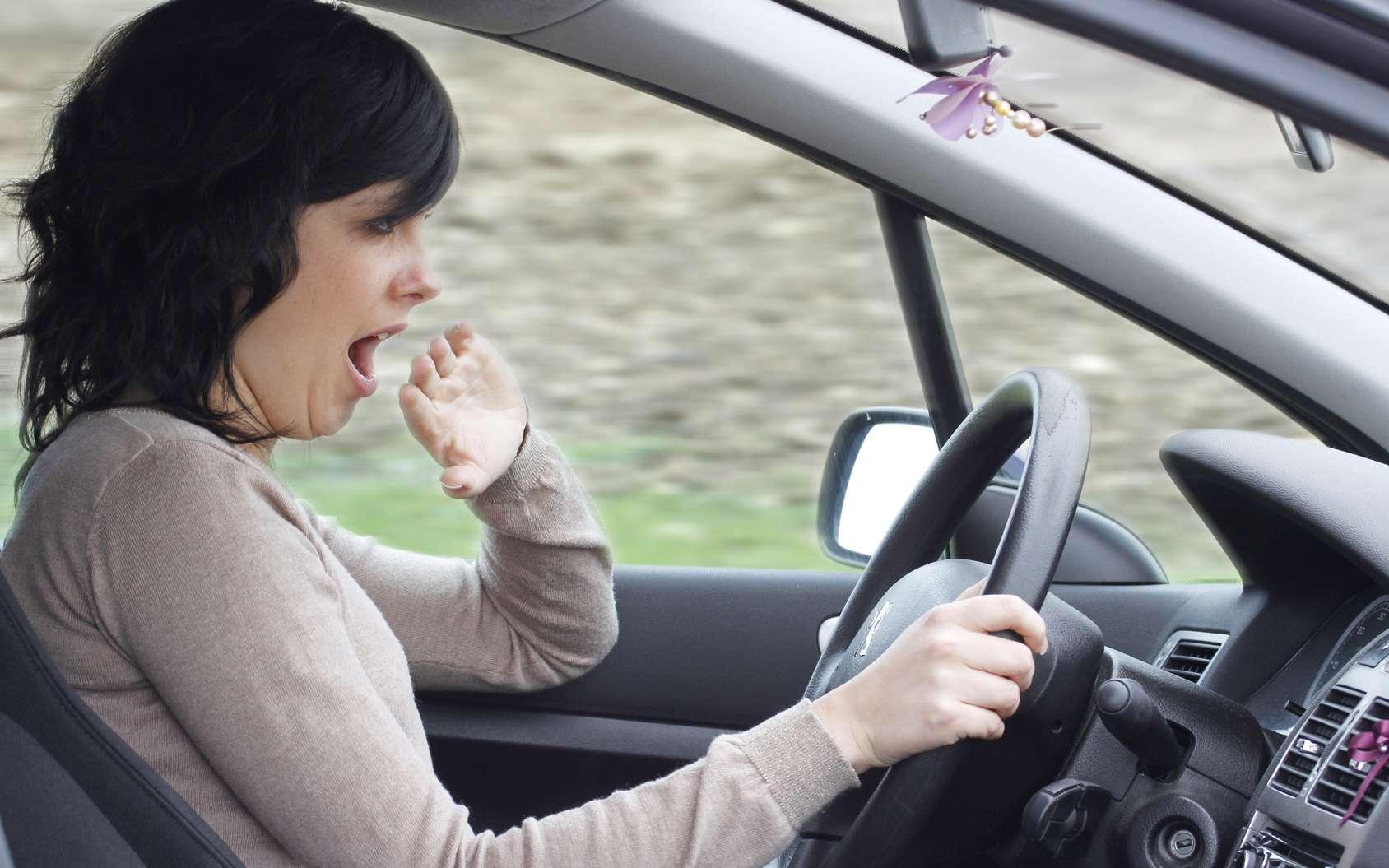 Alimentation, horaires de départ, signes à guetter, technologie : comment éviter la somnolence au volant. © alco81, Fotolia