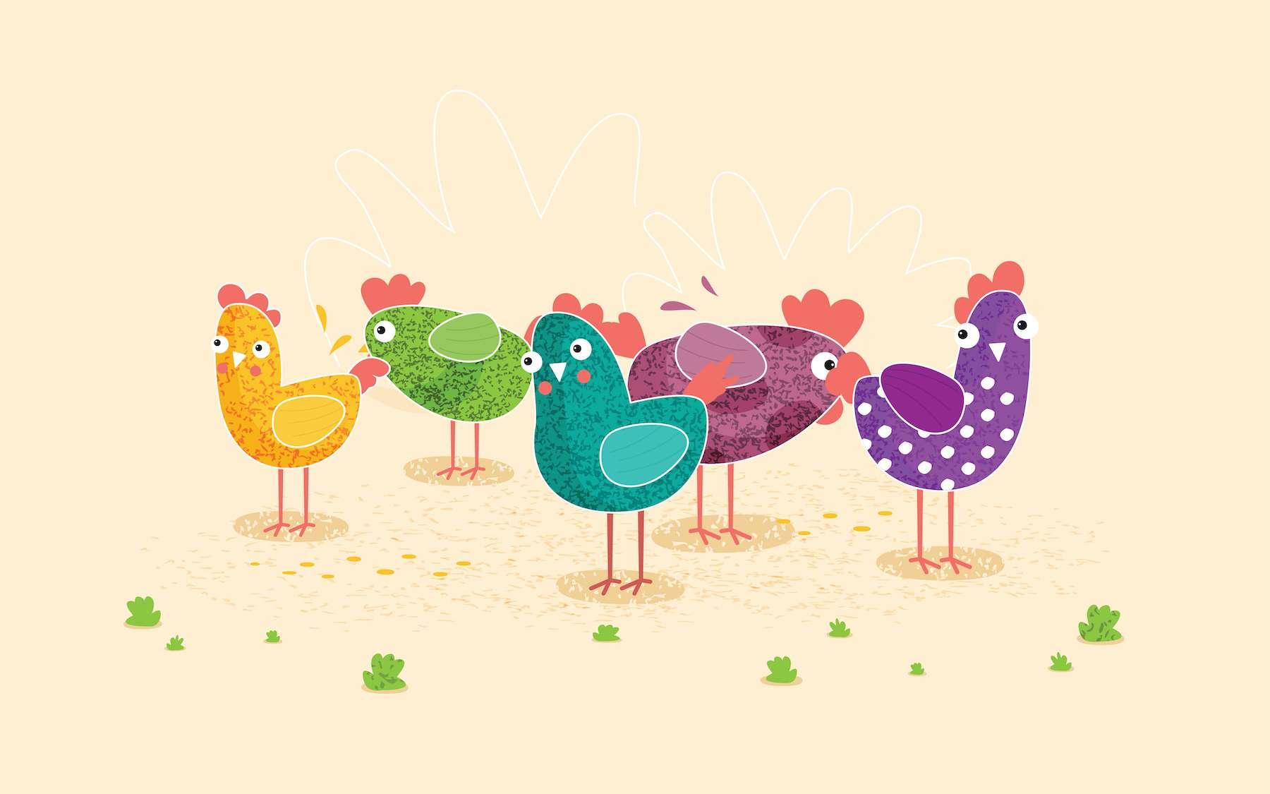 Les poules domestiques ont un cerveau plus petit proportionnellement aux poules sauvages. © mix3r, Adobe Stock