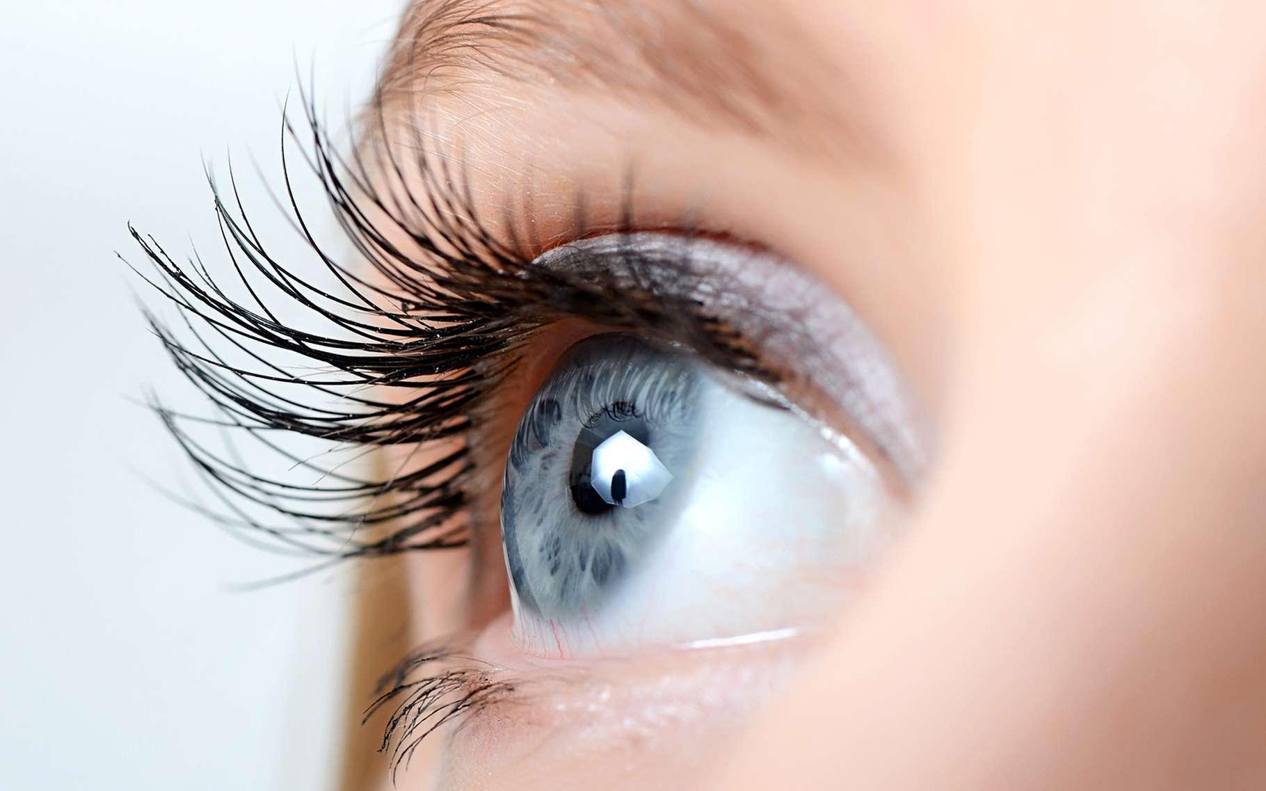 L'œil humain serait-il un extraordinaire photodétecteur ? C'est ce que suggère une nouvelle étude. © Voronin76, Shutterstock
