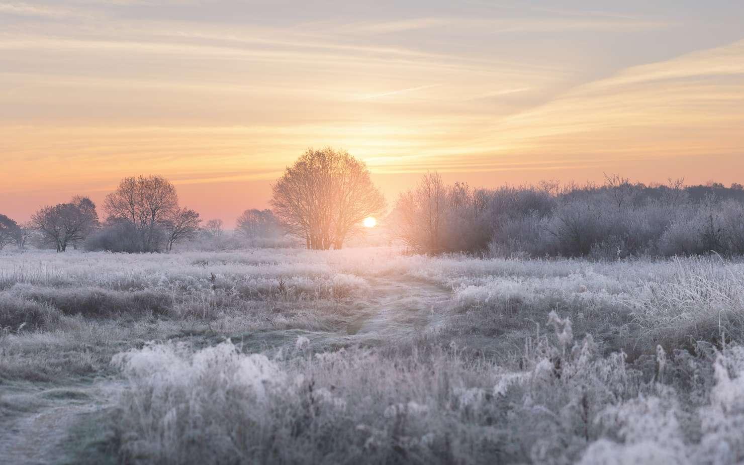 Le solstice d'hiver marque le premier jour de l'hiver. © PixieMe, Fotolia