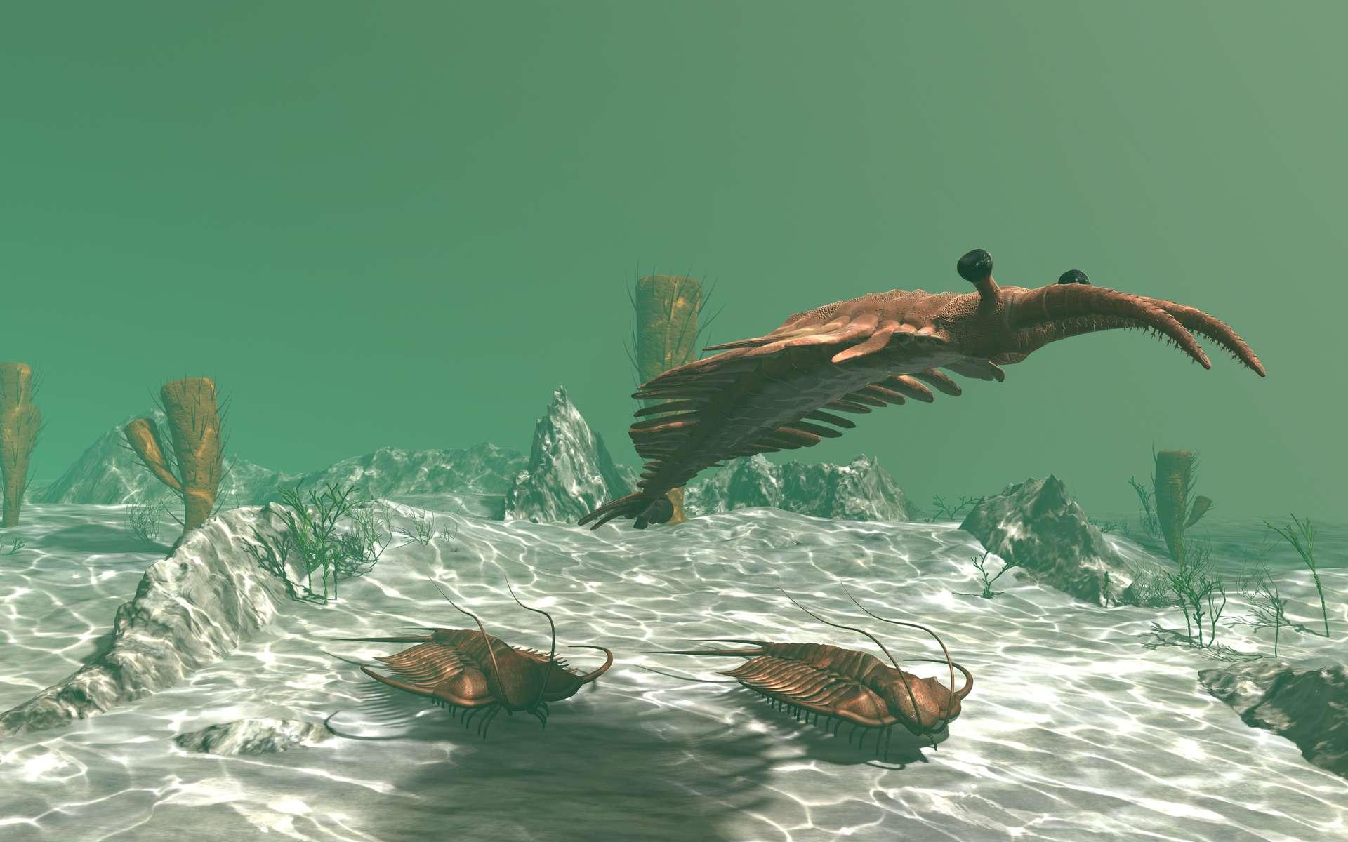 Anomalocaris, ici en train de nager au-dessus de trilobites, fait partie des radiodontes, un groupe qui inclut les premiers super prédateurs connus. © anibal, Adobe Stock