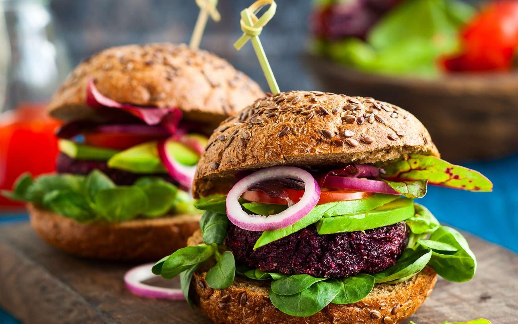 Pas de steak ni de cheddar dans un hamburger végétalien. © sarsmis, Shutterstock