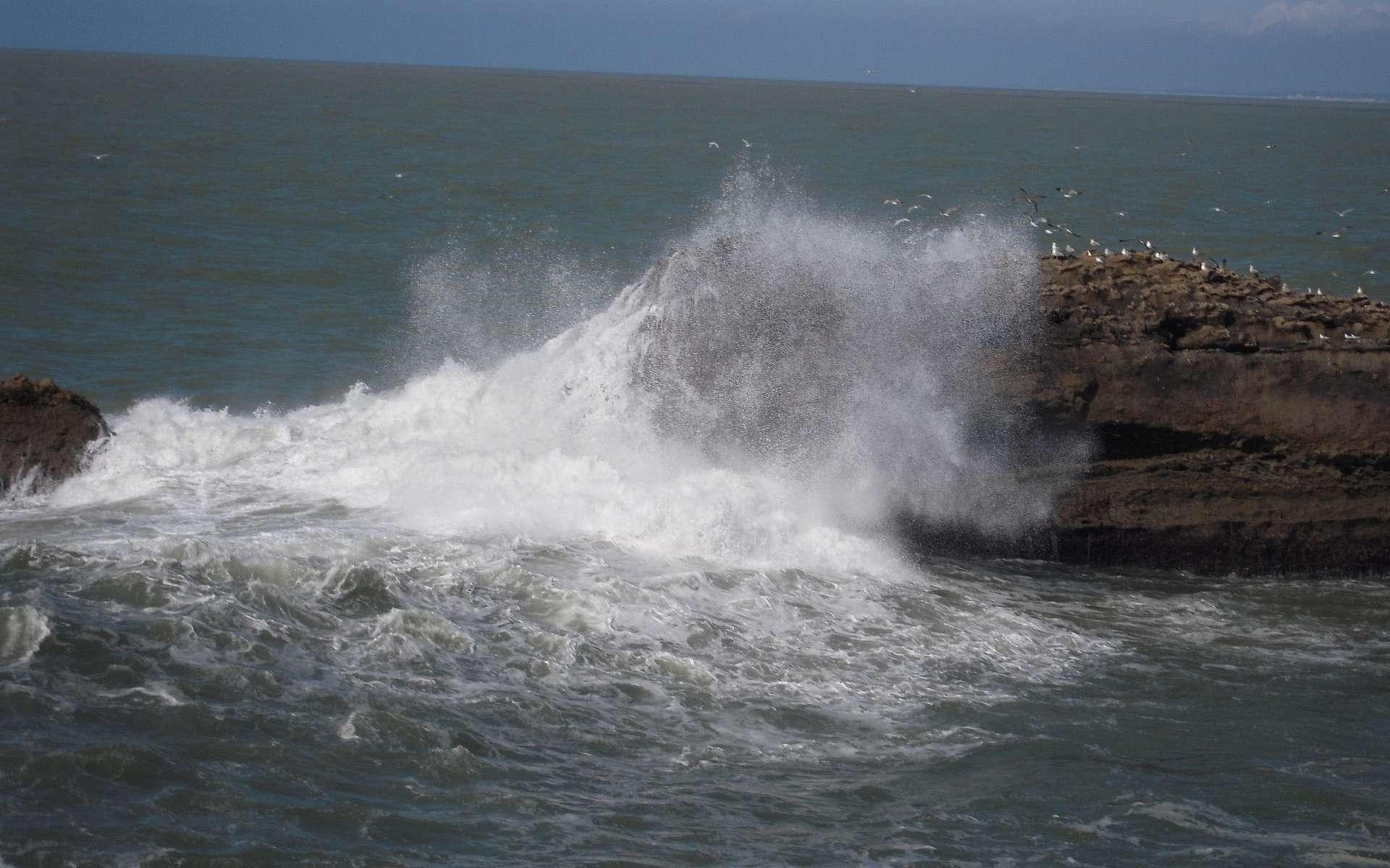 Le vent est à l'origine de la formation des vagues. © patrick janicek, Flockr, CC by 2.0