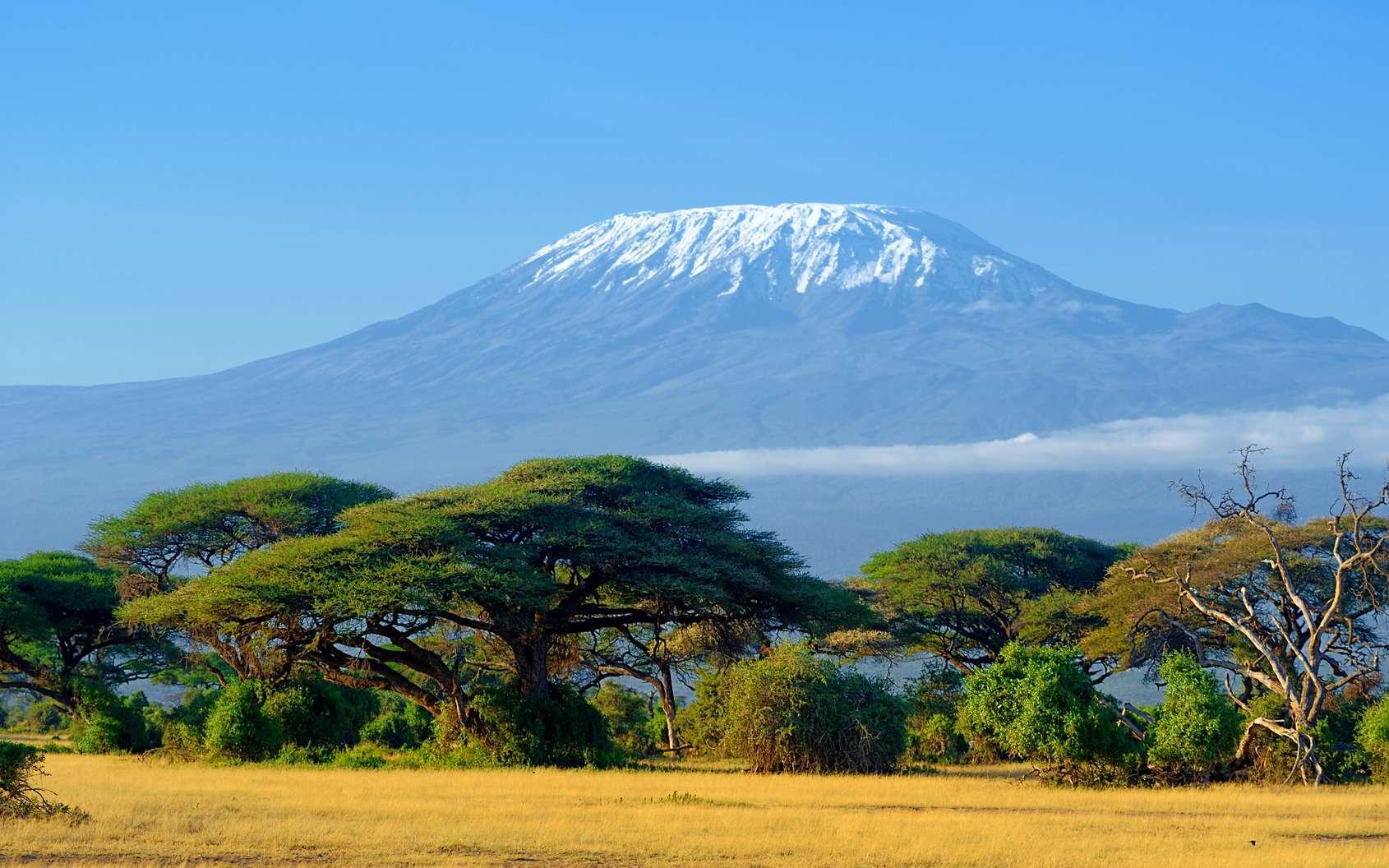 Une fois le pic Uhuru atteint, votre ascension du Kilimandjaro passera par la voie Mweka, idéale pour la descente. © byrdyak, fotolia