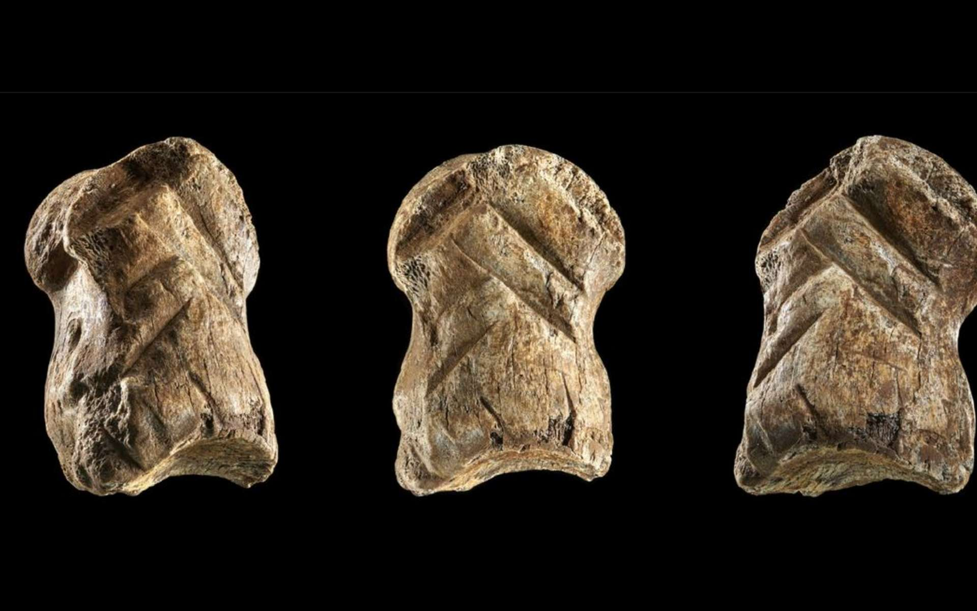 Une phalange de mégacéros gravée par Néandertal a été trouvée dans une ancienne grotte allemande. © Leder et al., 2021