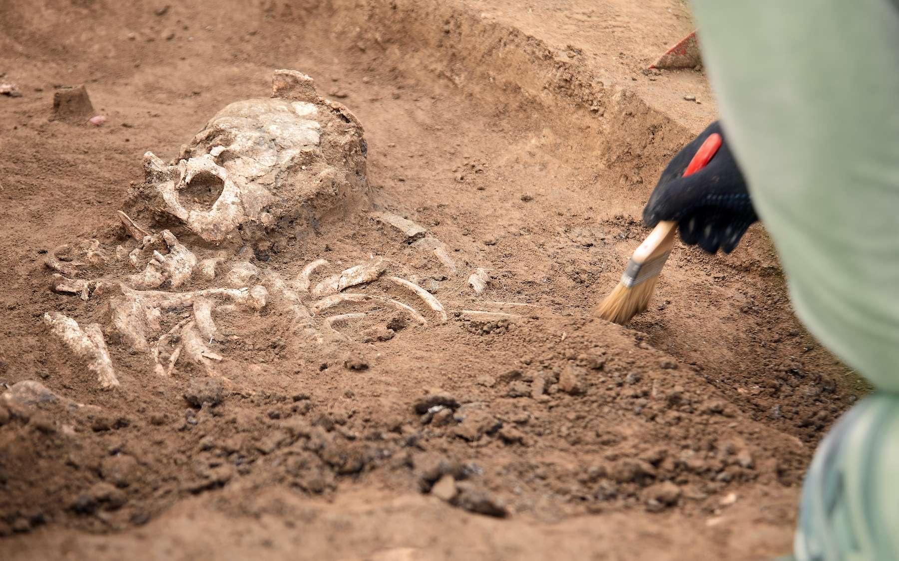 L'archéologie étudie la culture humaine passée grâce à des objets découverts sur le terrain. © Elena, Adobe Stock