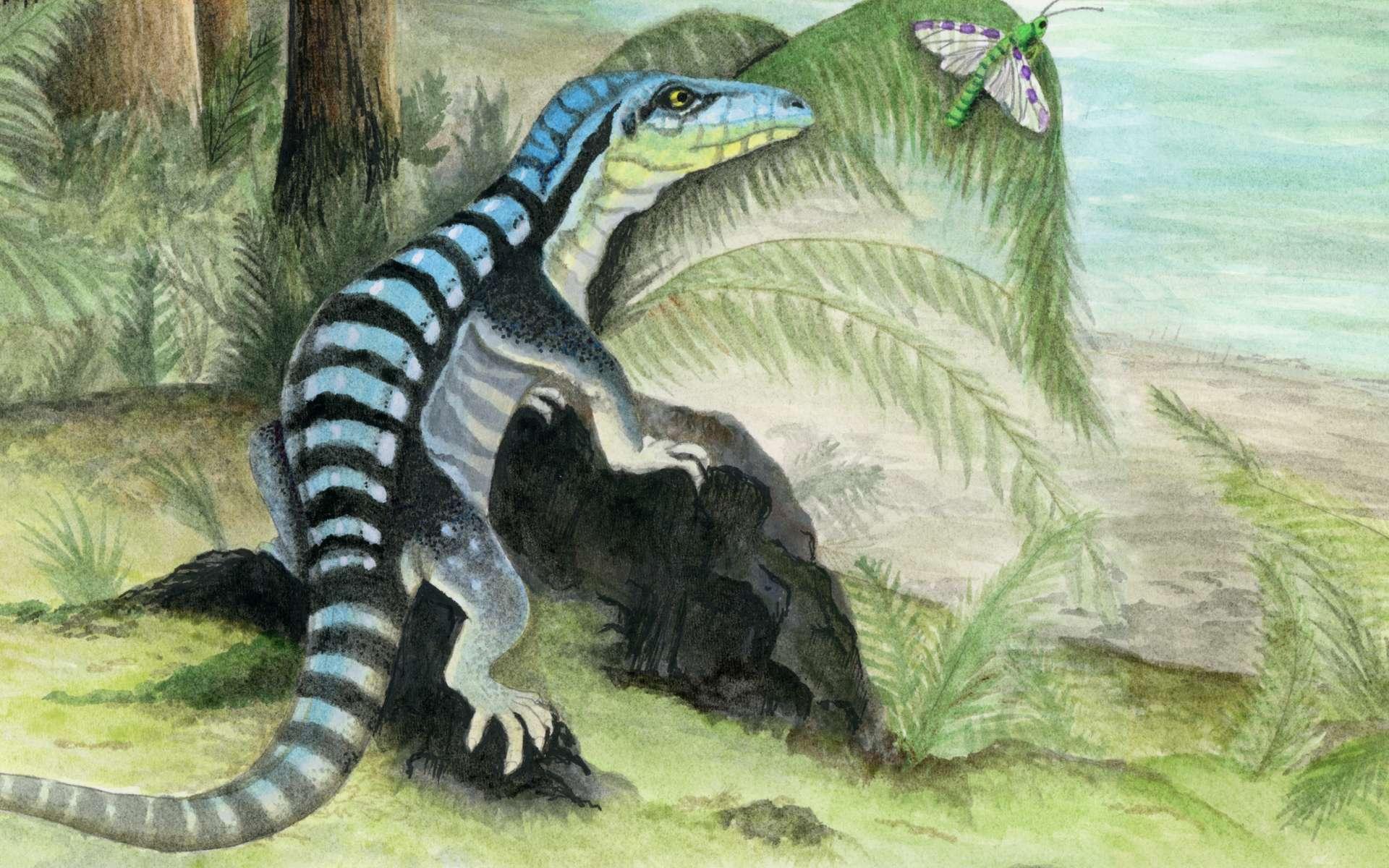 Cet iguane qui vivait en Antarctique est un ancêtre des dinosaures et des crocodiles. © Adrienne Stroup, Field Museum