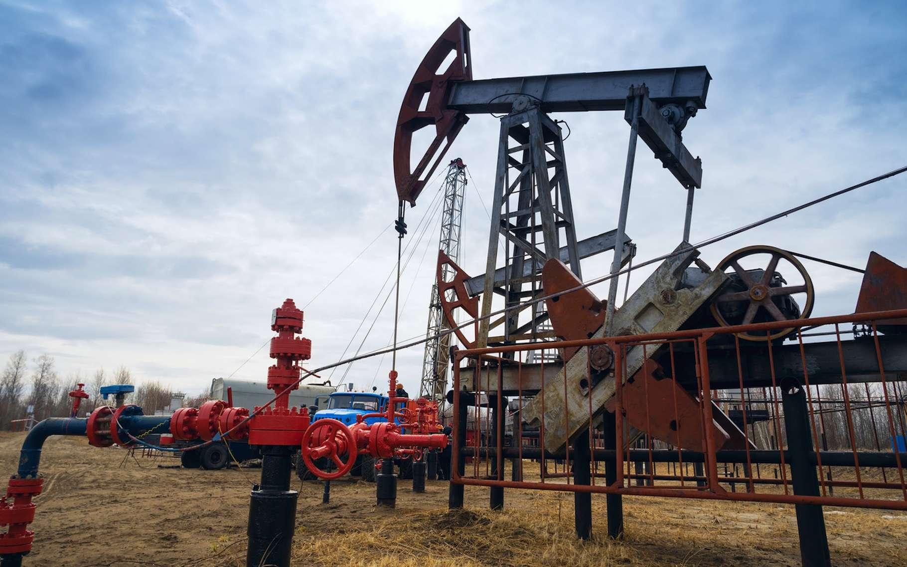 La transformation de matière organique en hydrocarbure comme le pétrole peut durer plusieurs dizaines de millions d'années. © amarinchenko106, Fotolia