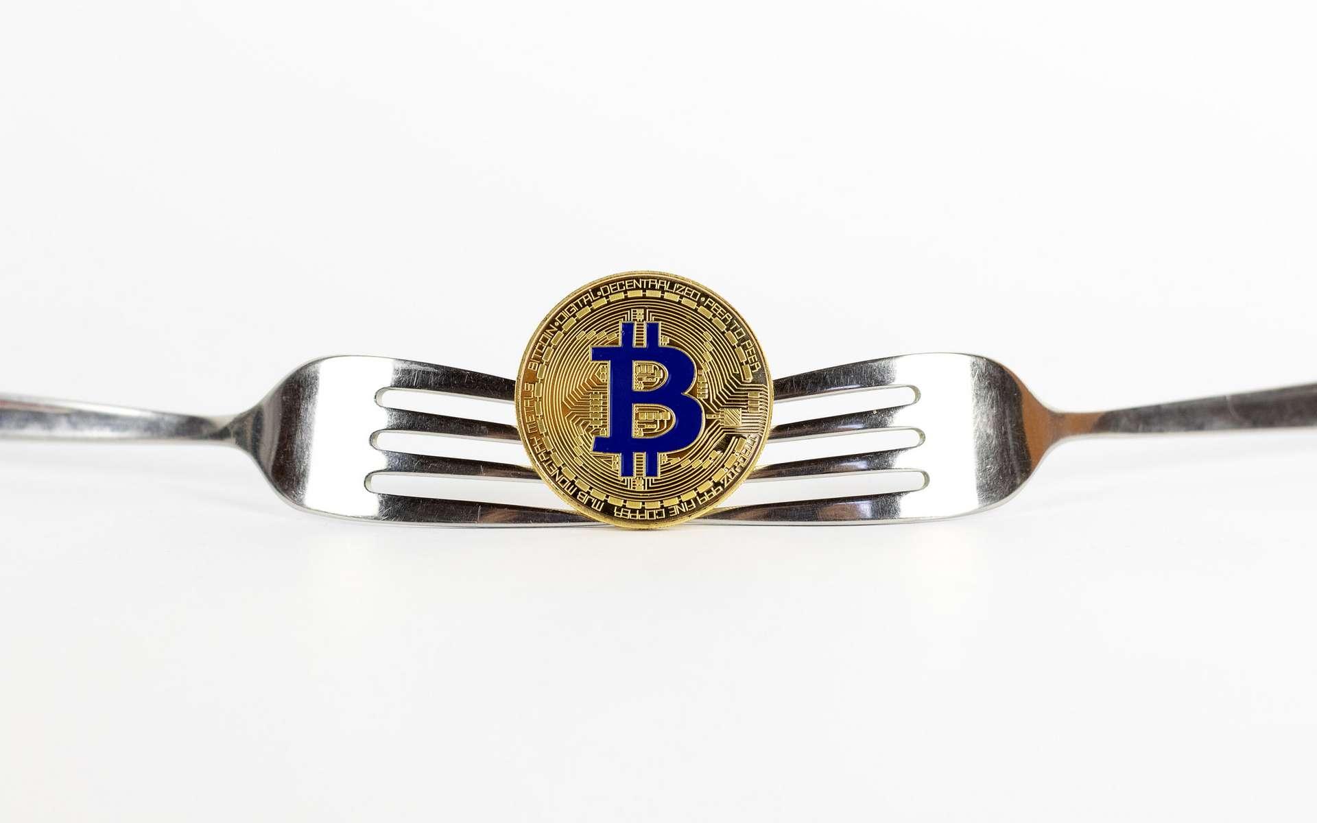 Que signifie Fork dans le monde de la cryptomonnaie ? © Jernej Furman, Flickr, CC by-sa 2.0