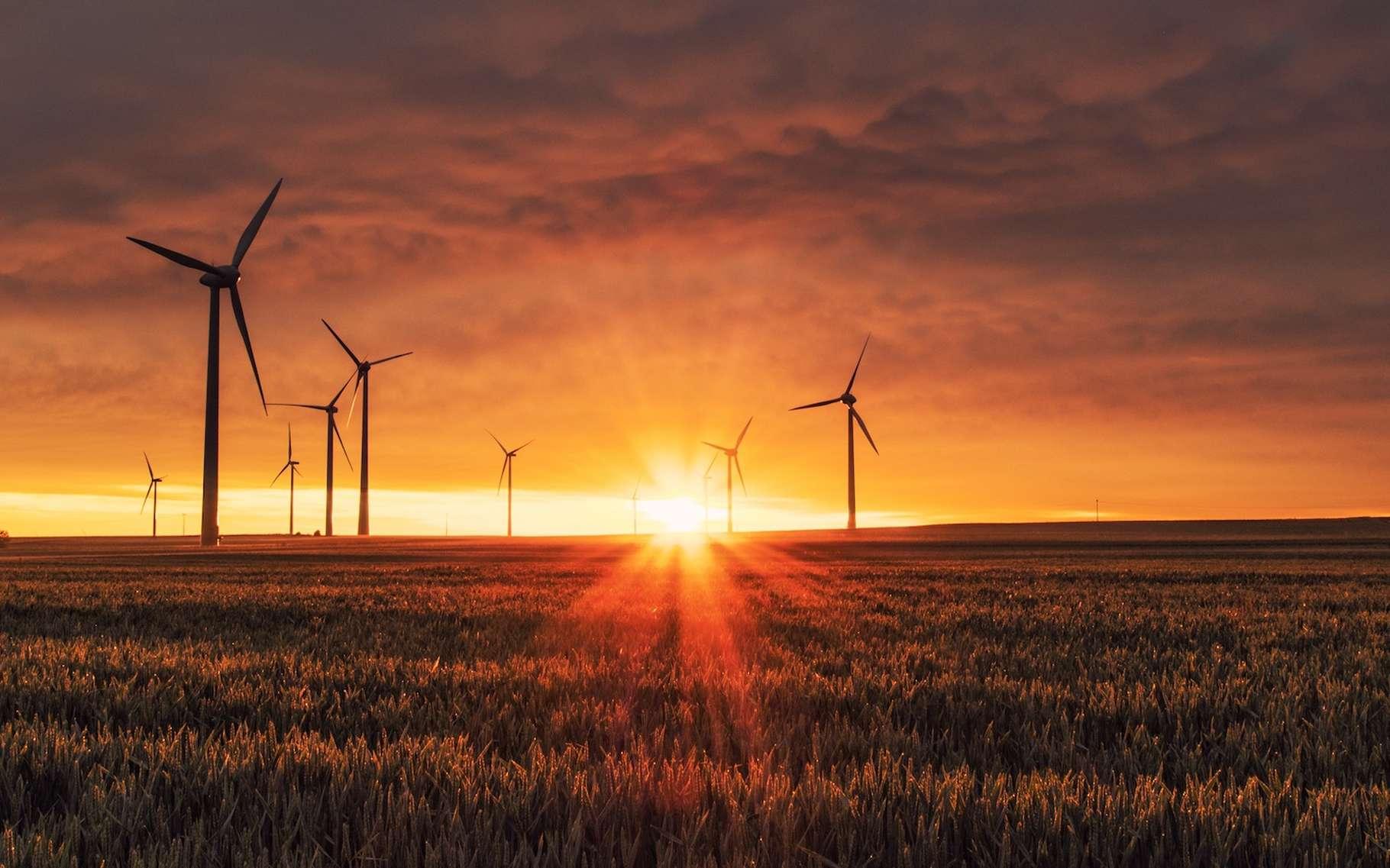 Depuis le 1er janvier 2017 — et avec un an d'avance sur la feuille de route établie en 2015 — les trains hollandais sont exclusivement alimentés par une électricité d'origine éolienne. © Karsten Würth, Unsplash, CC0 Domaine public