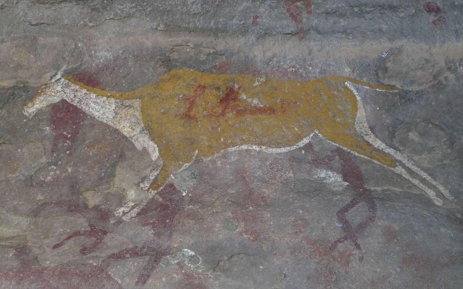 Des hommes et une antilope représentés sur une paroi de grès, une peinture réalisées par les San. Site RSA BUF1, Eastern Cape, Afrique du Sud. © Luc Ronat/CNRS Photothèque