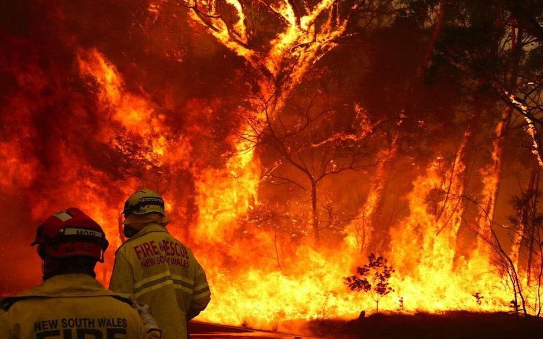 En Australie, les feux de brousse ont des conséquences en Nouvelle-Zélande dès maintenant. © @IsraelYvenson, Twitter