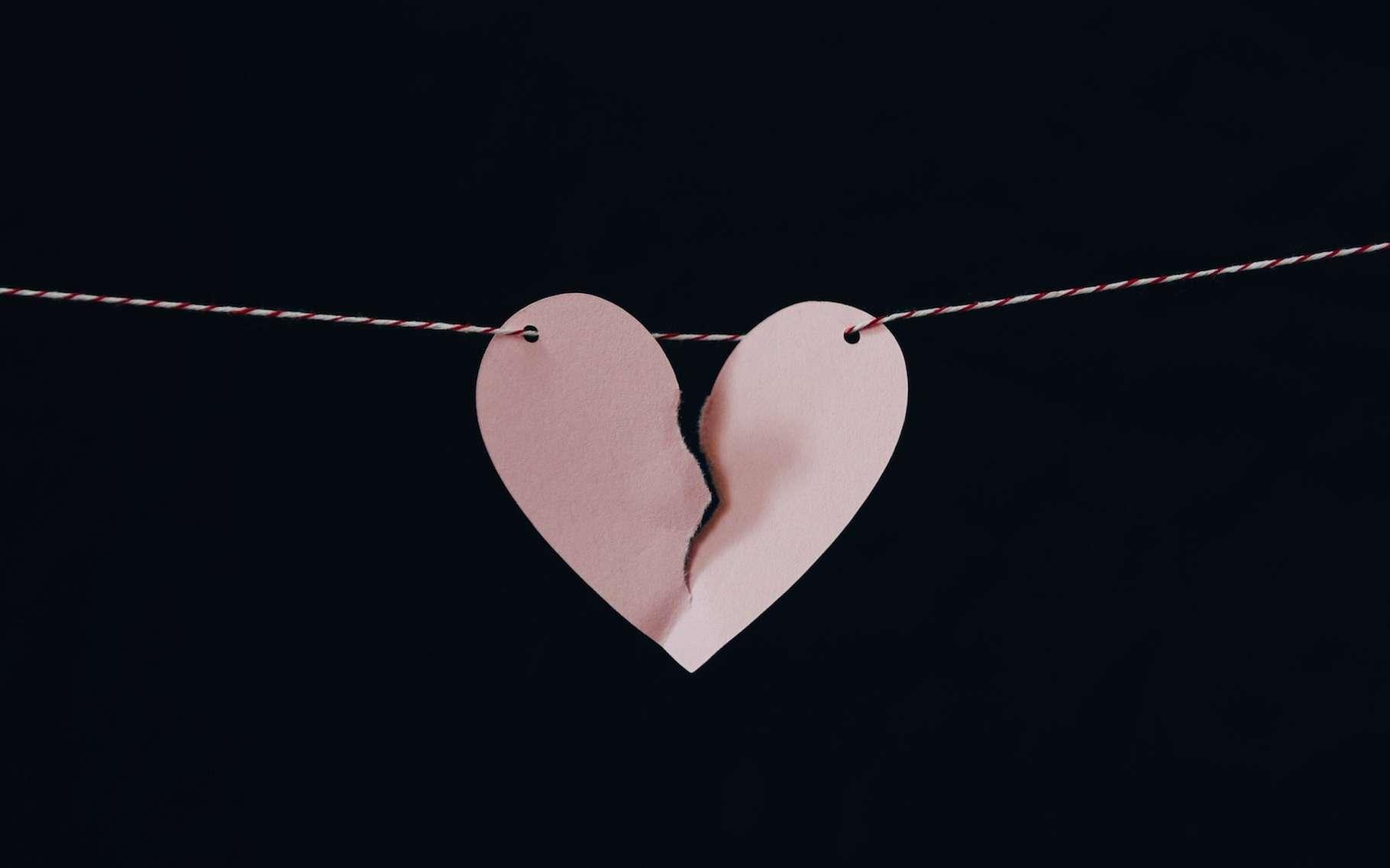 L'amour peut briser les cœurs. Au sens propre du terme. Les spécialistes parlent alors de cardiomyopathie de Tako-Tsubo. © Kelly Sikkema, Unsplash