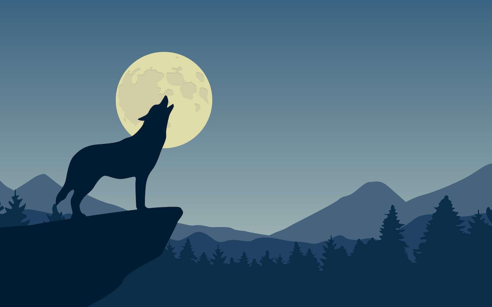 Le son des sirènes d'alerte est étrangement similaire au hurlement du loup. © krissikunterbunt, Adobe Stock