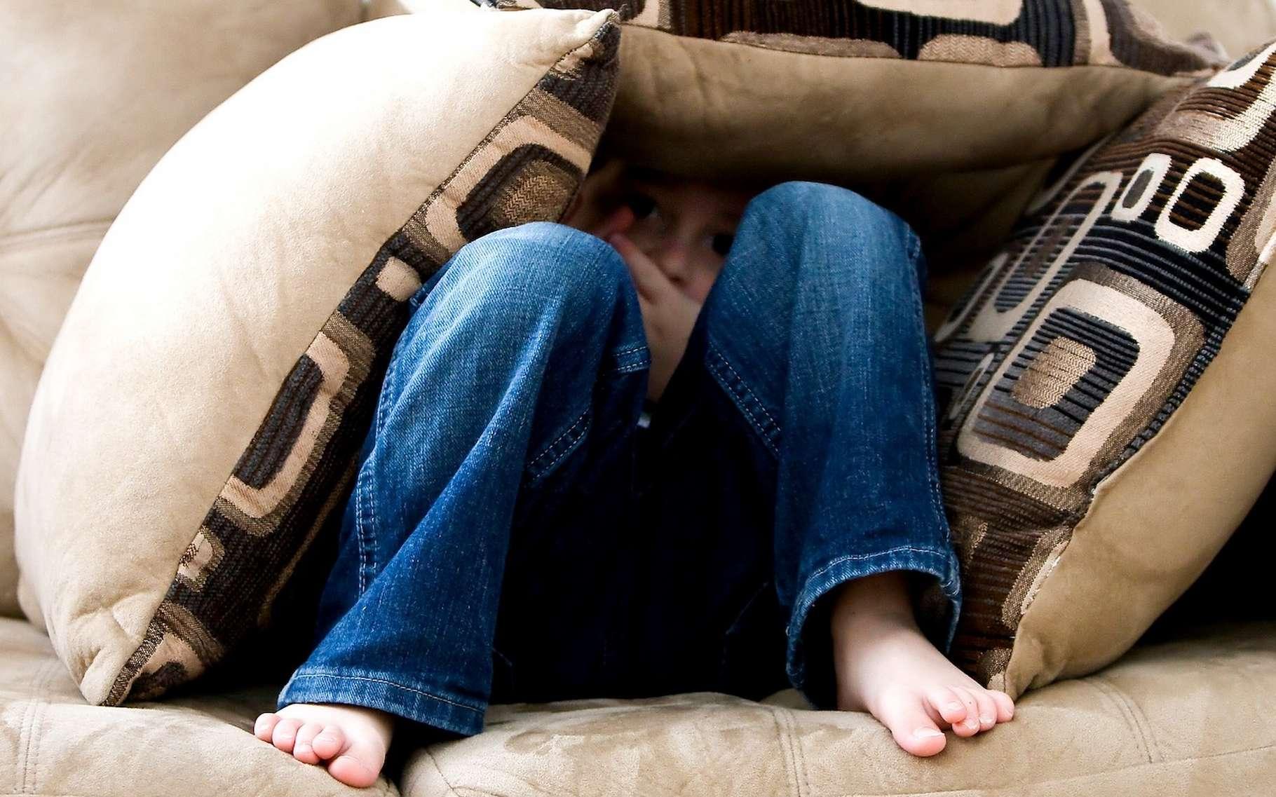Des chercheurs ont trouvé des traces de peur dans l'hypothalamus. © ambermb, Pixabay License
