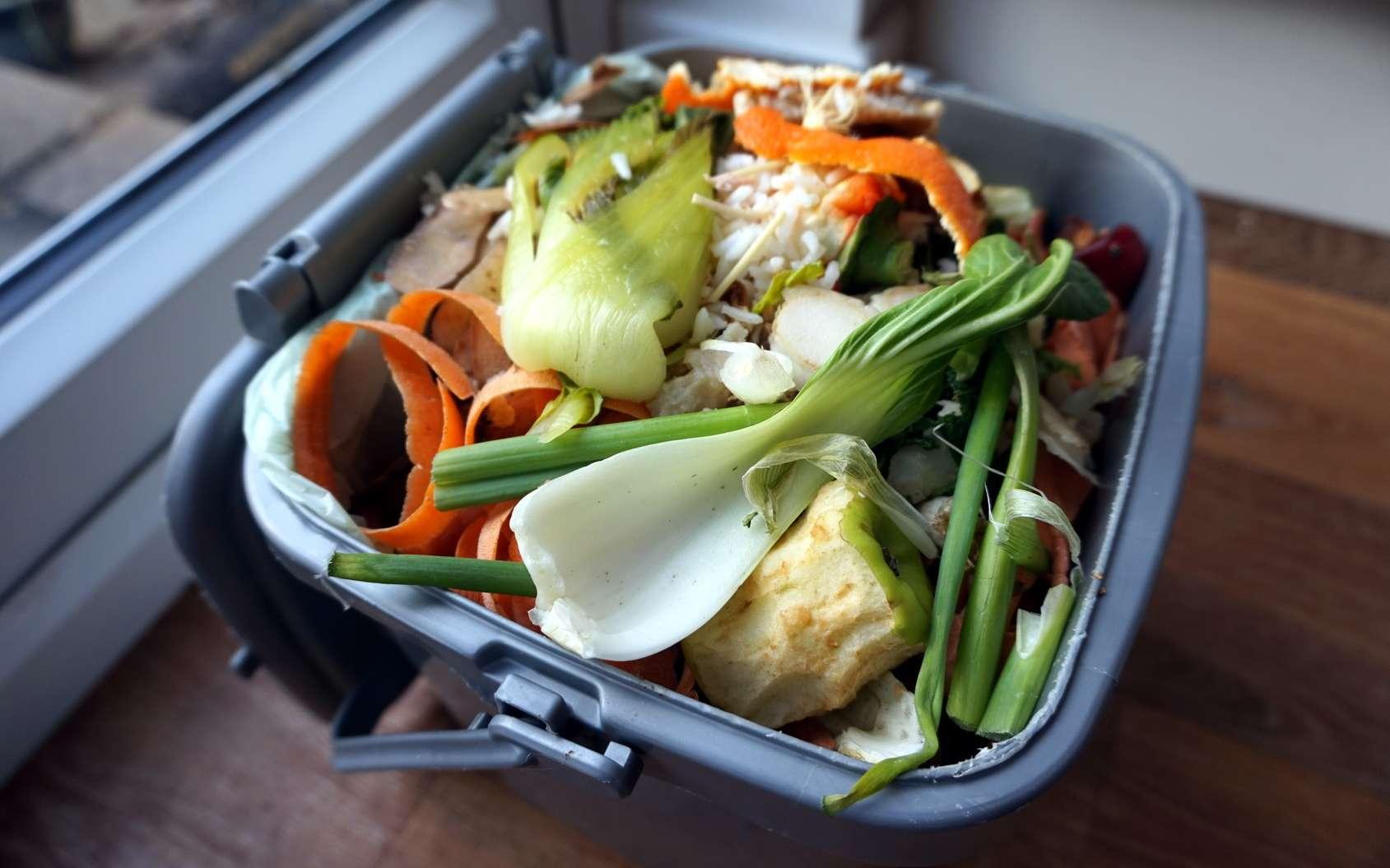 Un chiffre impressionnant et révoltant : 66 tonnes de nourriture seront jetées à la poubelle chaque seconde en 2030. © Gary Perkin, Fotolia