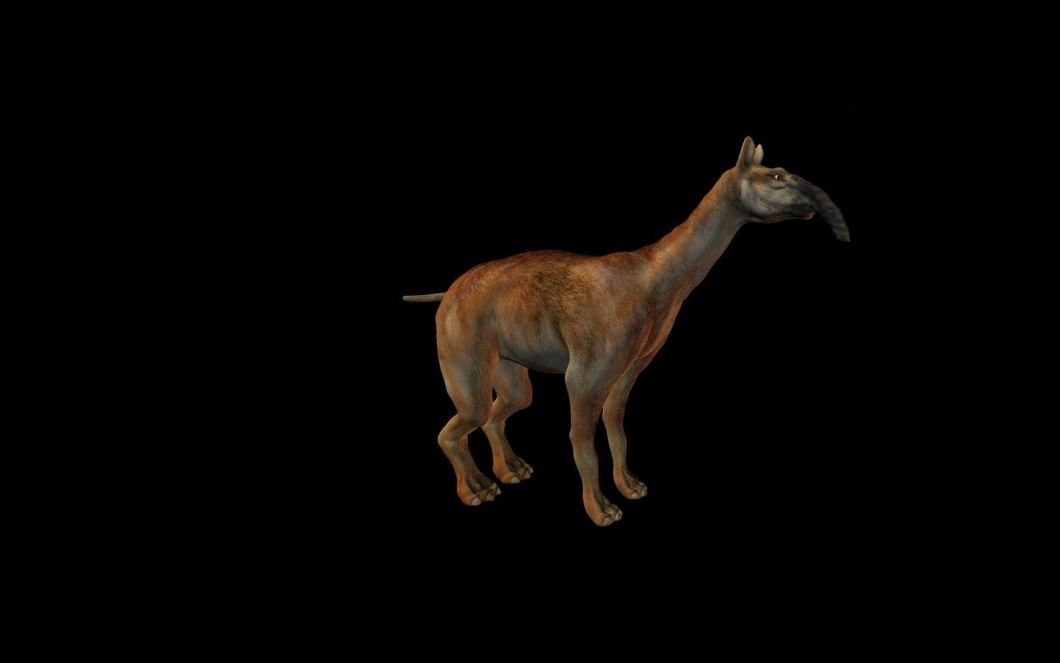 Le Macrauchenia patachonica avait un long cou qui, bien qu'il évoque la girafe, n'en était pas un cousin proche. © Andreas Meyer, fotolia
