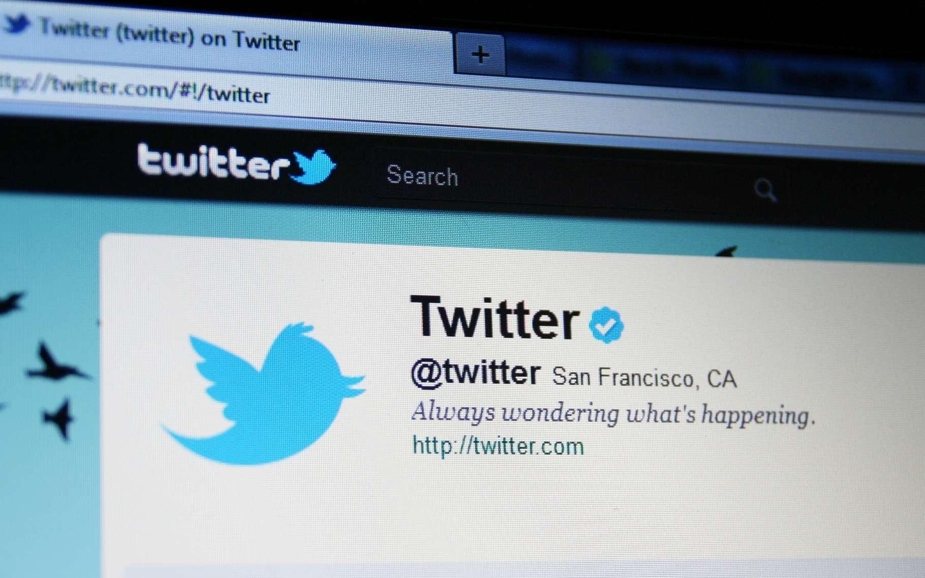 Un compte Twitter n'est définitivement désactivé qu'au bout de 30 jours. © Annette Shaff, Shutterstock