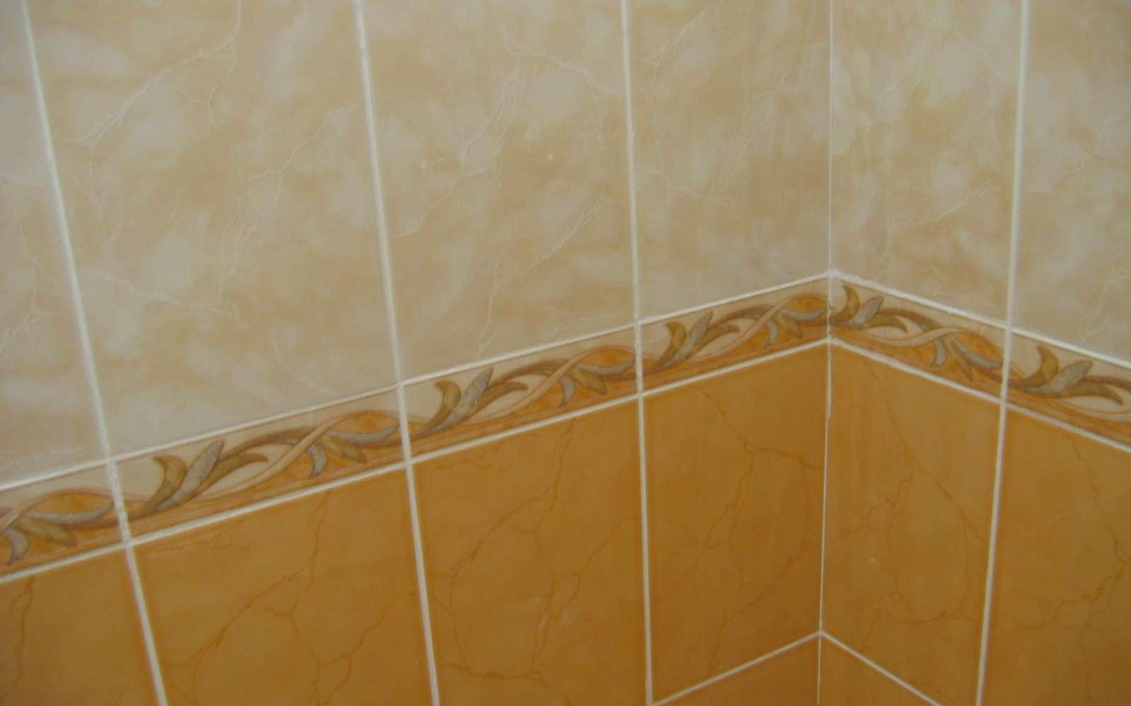 Pour carreler un mur de salle de bain par exemple, vous pouvez utiliser un listel (moulure), qui apporte une touche décorative supplémentaire. © Sir Voland, Wikimedia Commons, Domaine public
