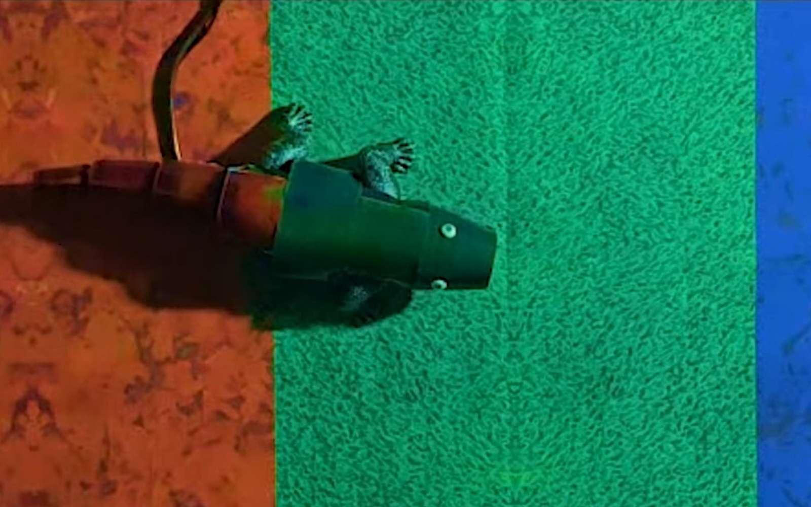 Ce robot caméléon utilise des cristaux liquides thermochromiques pour se fondre dans le décor. © Seung Hwan Ko et al.