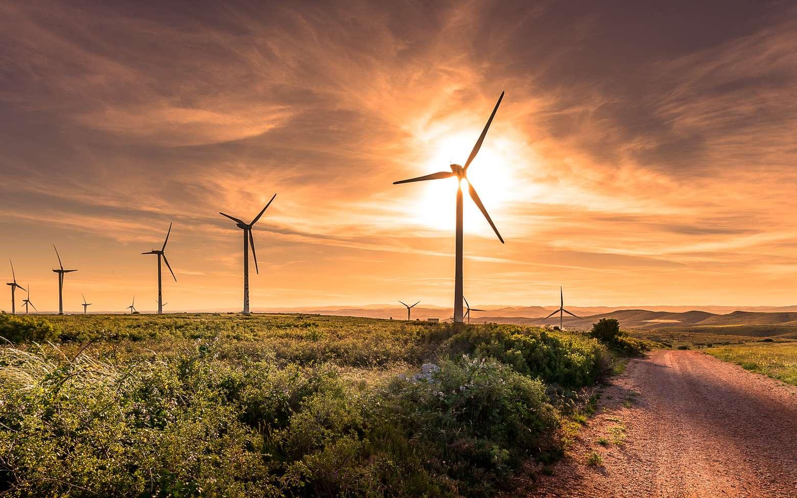 L'énergie éolienne est-elle menacée par le réchauffement climatique ? Ici, un parc éolien. © Olivier Tabary, Fotolia