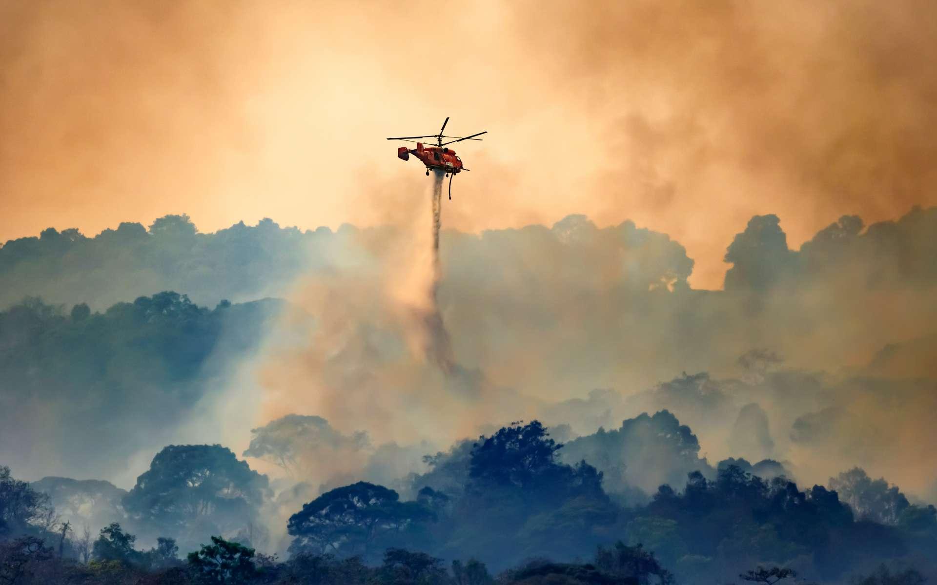 Le feu de forêt du Var est combattu sur tous les fronts, notamment du ciel, où les avions et les hélicoptères bombardent de l'eau dans un ballet continu. © toa555, Adobe Stock